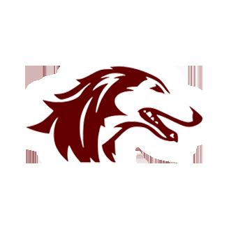Southern Illinois Football logo