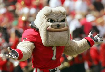 UGA, the team mascot of the Georgia Bulldogs, is ready for the season!