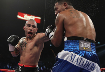 LAS VEGAS - MARCH 12:  Miguel Cotto punches Ricardo Mayorga during their WBA Super Welterweight title bout at the MGM Grand Garden Arena on March 12, 2011 in Las Vegas, Nevada.  (Photo by Al Bello/Getty Images)