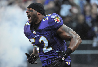 Ray Lewis has been one of the hardest hitting defenders in the NFL since entering the league in 1996.