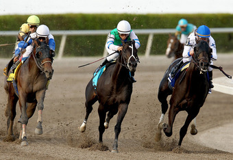 HALLANDALE, FL - MARCH 31:  Take Charge Indy #3, riden by Calvin Borel, charges ahead of Neck 'n Neck #4, riden by Edgar Prado, and Reveron #9, riden by Elvis Trujillo, on turn four during the Florida Derby at Gulfstream Park on March 31, 2012 in Hallanda
