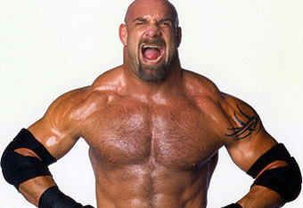 Is this what Ryback sees when he looks in the mirror? (Image courtesy of TVTropes.org)