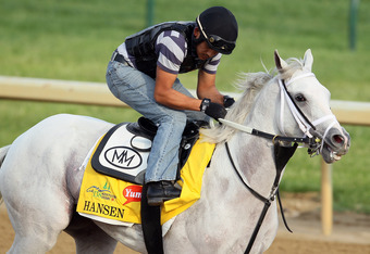 LOUISVILLE, KY - MAY 03:  Hansen trains on the track in preparation for the 138th Kentucky Derby at Churchill Downs on May 3, 2012 in Louisville, Kentucky.  (Photo by Elsa/Getty Images)