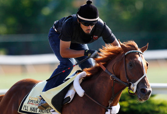 BALTIMORE, MD - MAY 17:  Exercise rider Jonny Garcia takes I'll Have Another over the track in preparation for the 137th Preakness Stakes at Pimlico Race Course on May 17, 2012 in Baltimore, Maryland.  (Photo by Rob Carr/Getty Images)