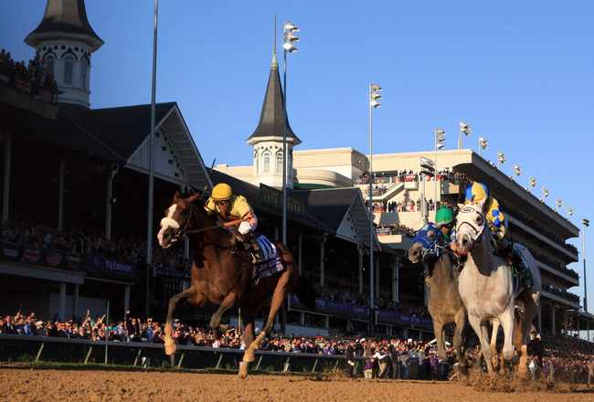 LOUISVILLE, KY - NOVEMBER 05:  Jockey Ramon Dominguez rides Hansen #5, far right, ahead of jockey Javier Castellano and Union Rags #10 to win the Breeders' Cup Juvenile during the 2011 Breeders' Cup World Championships at Churchill Downs on November 5, 2011 in Louisville, Kentucky.  (Photo by Rob Carr/Getty Images)