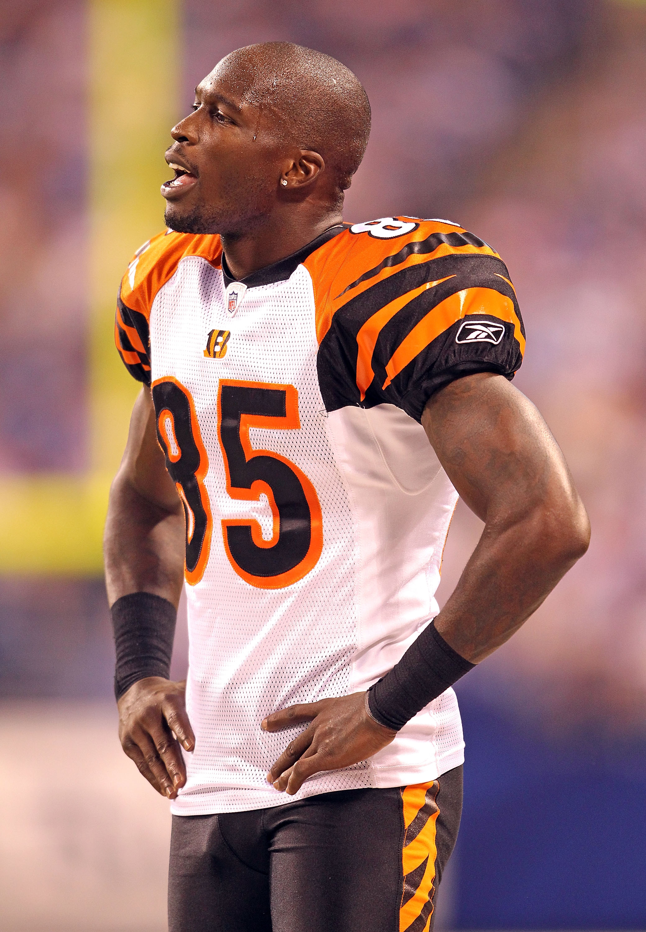 INDIANAPOLIS - SEPTEMBER 02:  Chad Ochocinco #85  of the Cincinnati Bengals talks with teammates during the NFL preseason game against the Indianapolis Colts at Lucas Oil Stadium on September 2, 2010 in Indianapolis, Indiana.  (Photo by Andy Lyons/Getty I