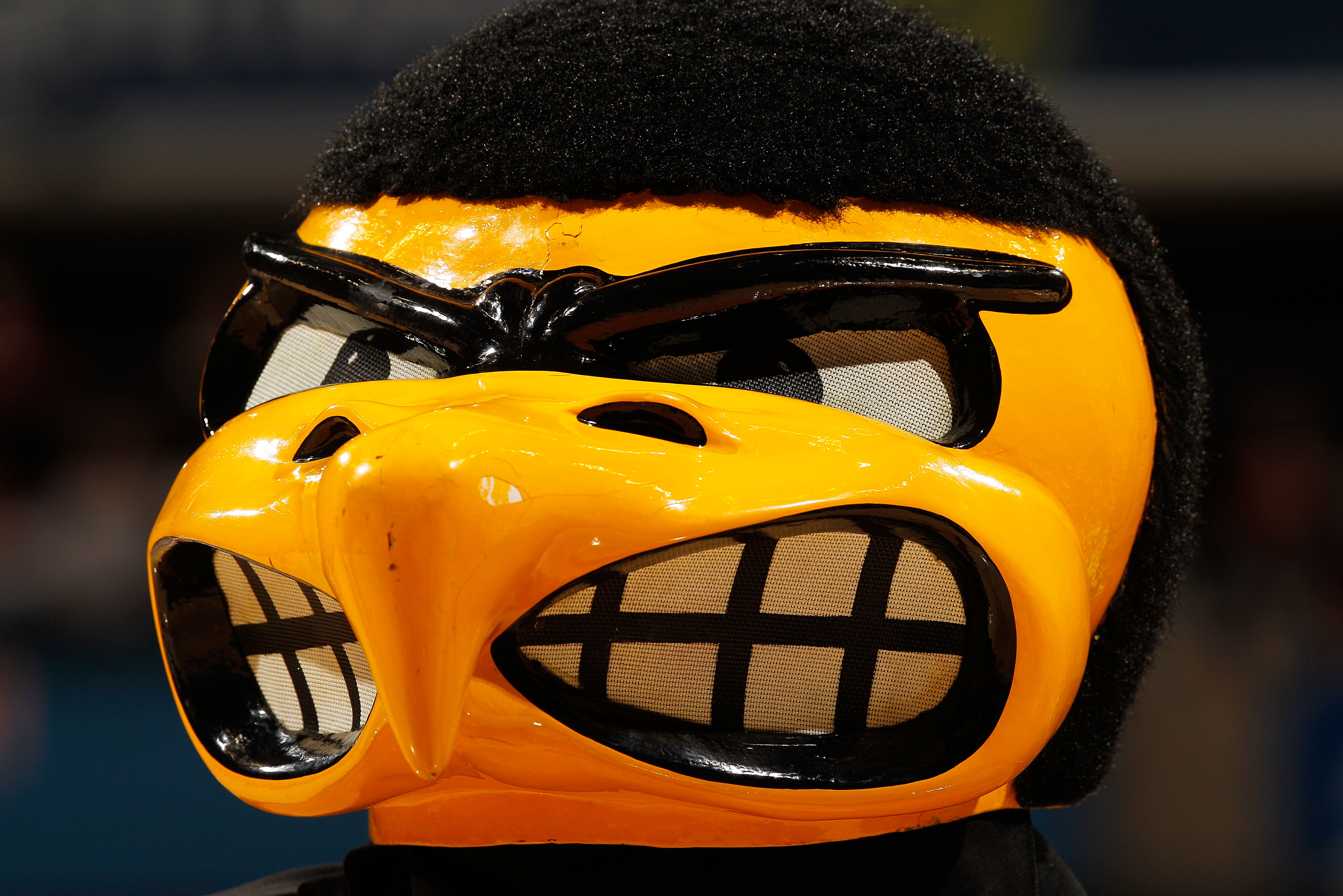 The fury of Herky