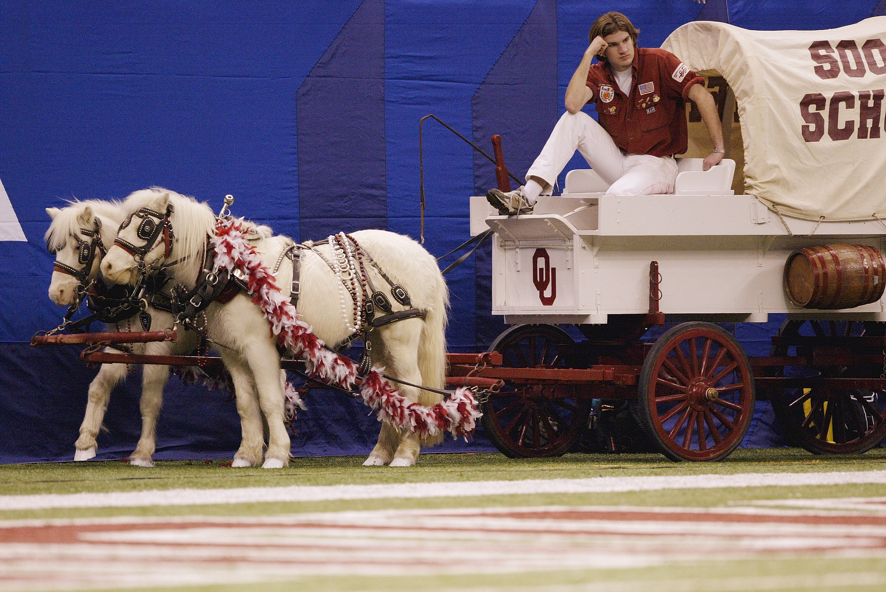 NEW ORLEANS - JANUARY 4:  The Sooner Schooner, powered by matching white ponies named Boomer and Sooner, on the sideline during the Nokia Sugar Bowl National Championship between the Oklahoma Sooners and the Louisiana State Tigers on January 4, 2004 at th
