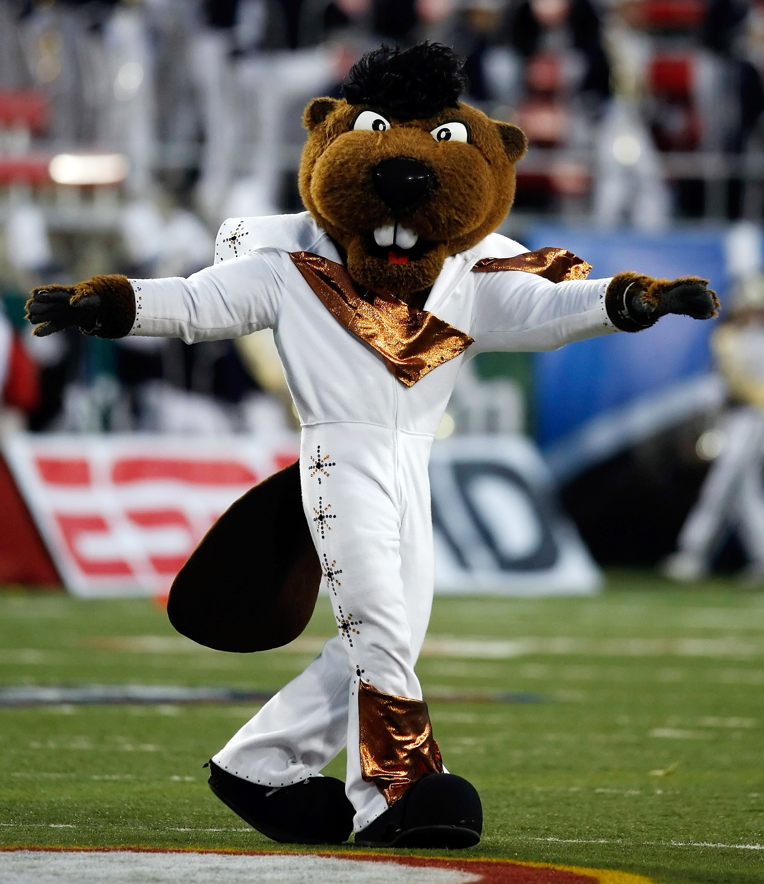 LAS VEGAS - DECEMBER 22:  Oregon State Beavers mascot Benny appears on the field in an Elvis Presley-inspired costume before the team's game against the Brigham Young University Cougars in the MAACO Las Vegas Bowl at Sam Boyd Stadium December 22, 2009 in