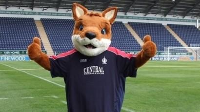 That's a fox?! It looks like a kangaroo!