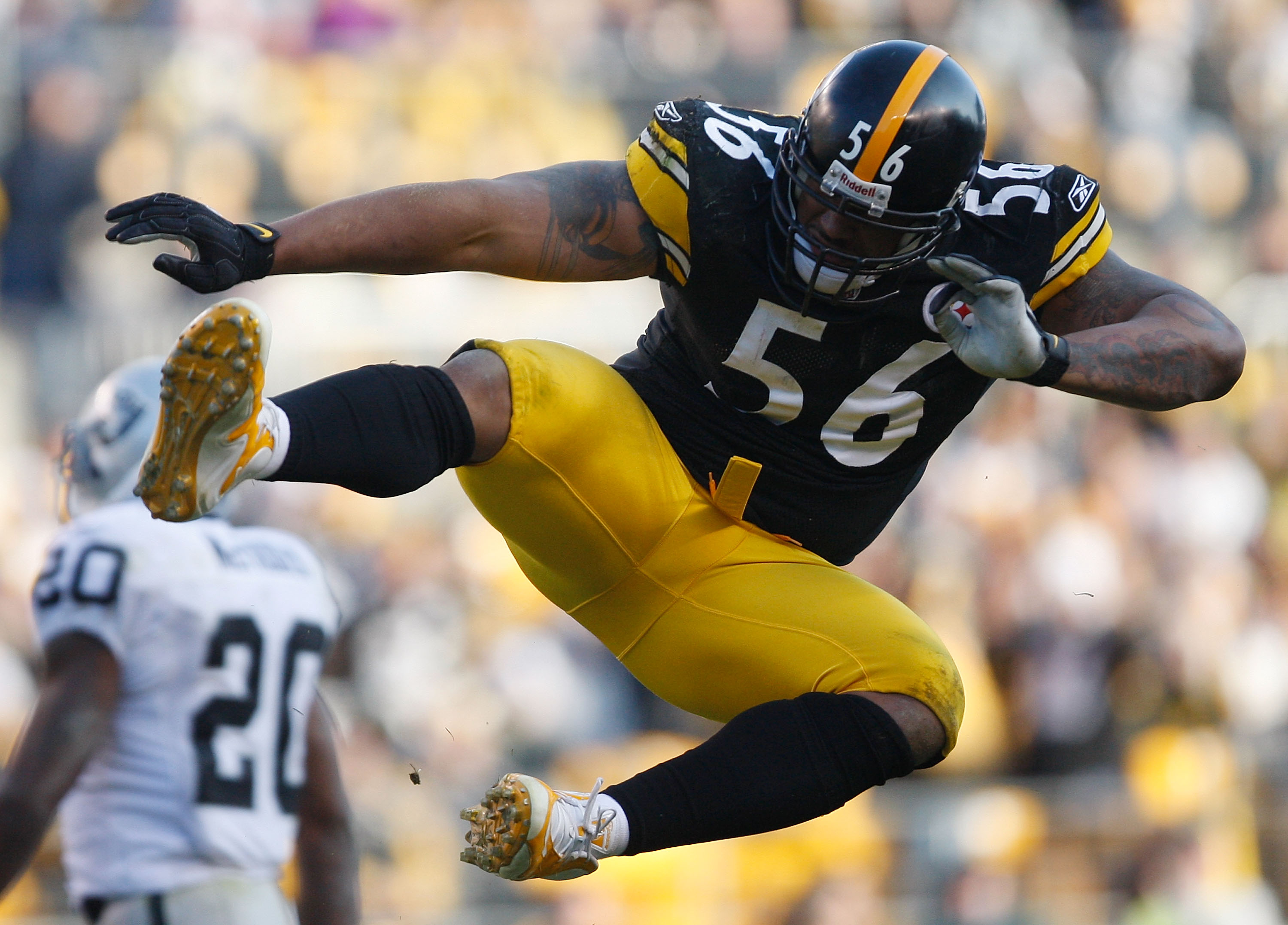 19bc4b826 PITTSBURGH - DECEMBER 6  LaMarr Woodley  56 of the Pittsburgh Steelers  celebrates after sacking