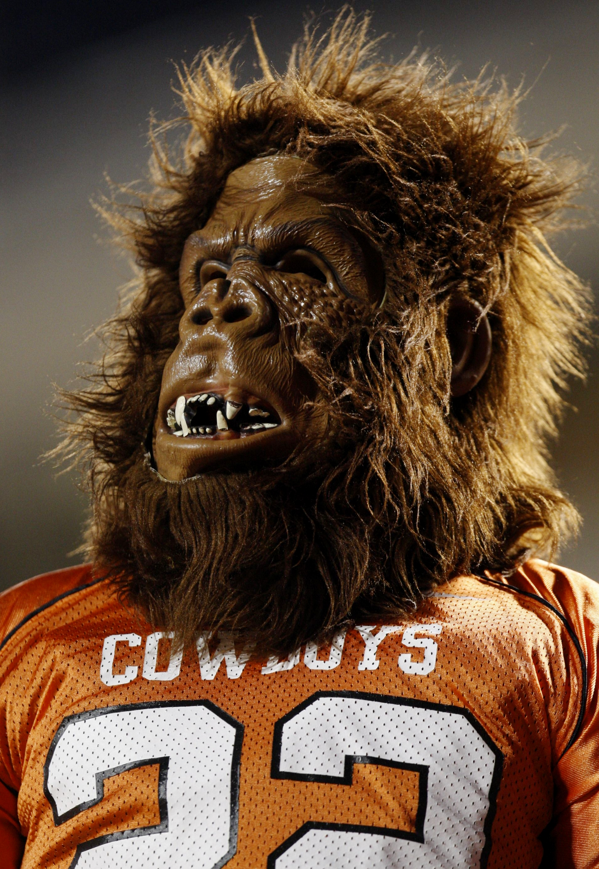 STILLWATER, OK - OCTOBER 31:  A fan of the Oklahoma State Cowboys watches the game against the Texas Longhorns at Boone Pickens Stadium on October 31, 2009 in Stillwater, Oklahoma. (Photo by Ronald Martinez/Getty Images)