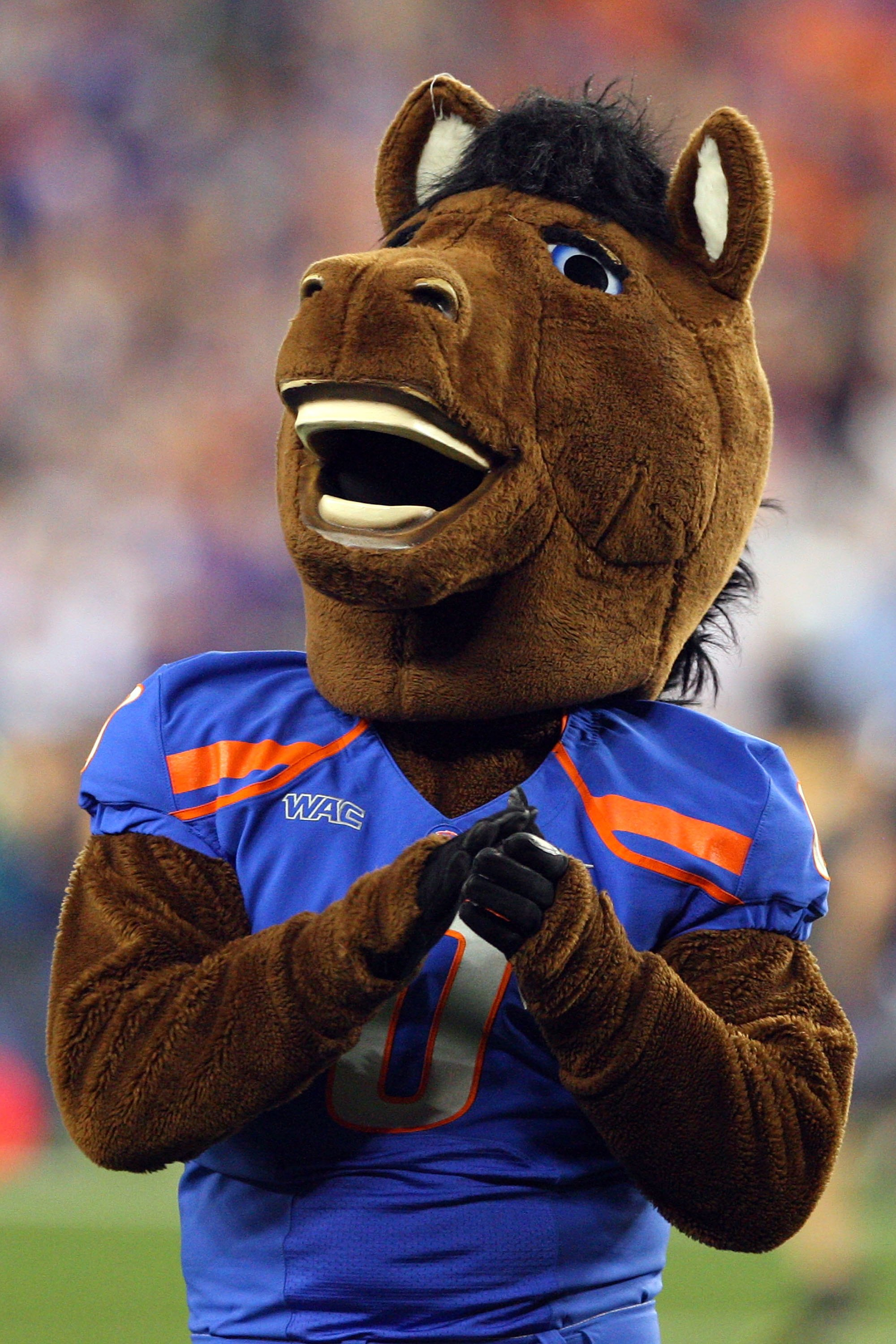 GLENDALE, AZ - JANUARY 04:  The Boise State Broncos mascot performs against the TCU Horned Frogs during the Tostitos Fiesta Bowl at the Universtity of Phoenix Stadium on January 4, 2010 in Glendale, Arizona.  (Photo by Christian Petersen/Getty Images)
