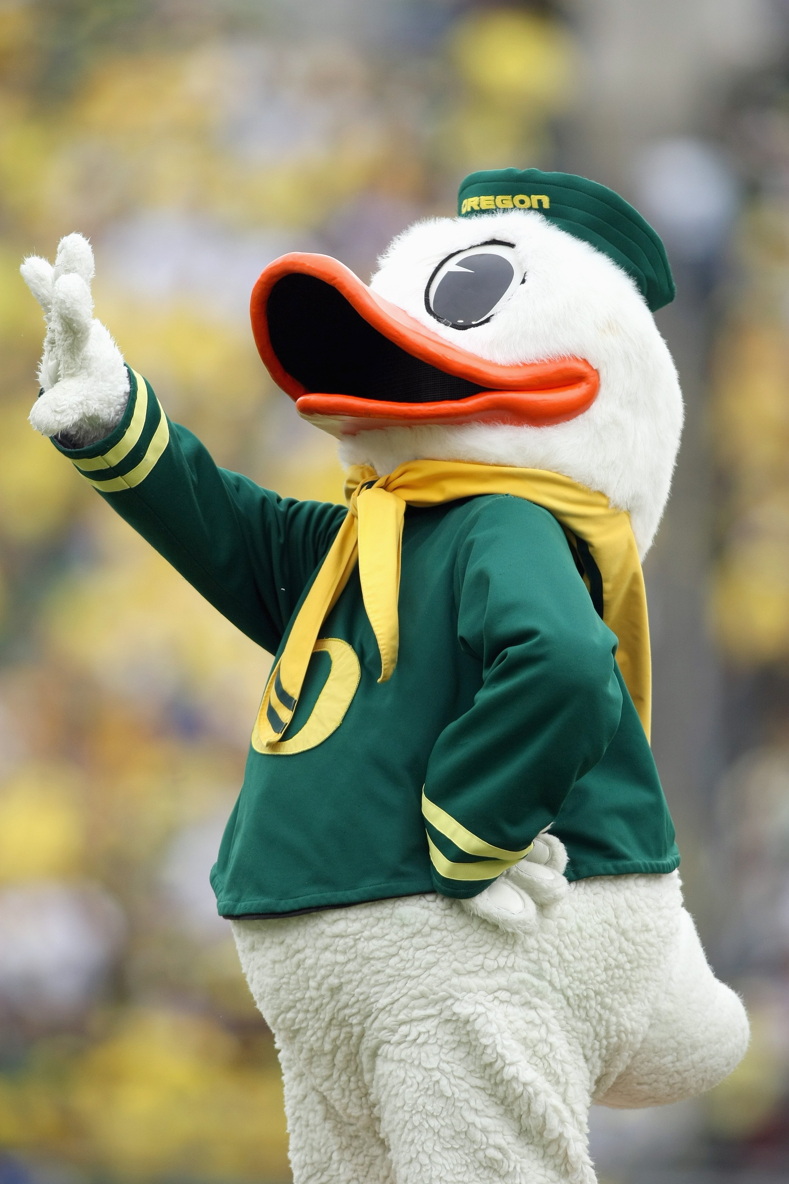 Quack attack is BACK!