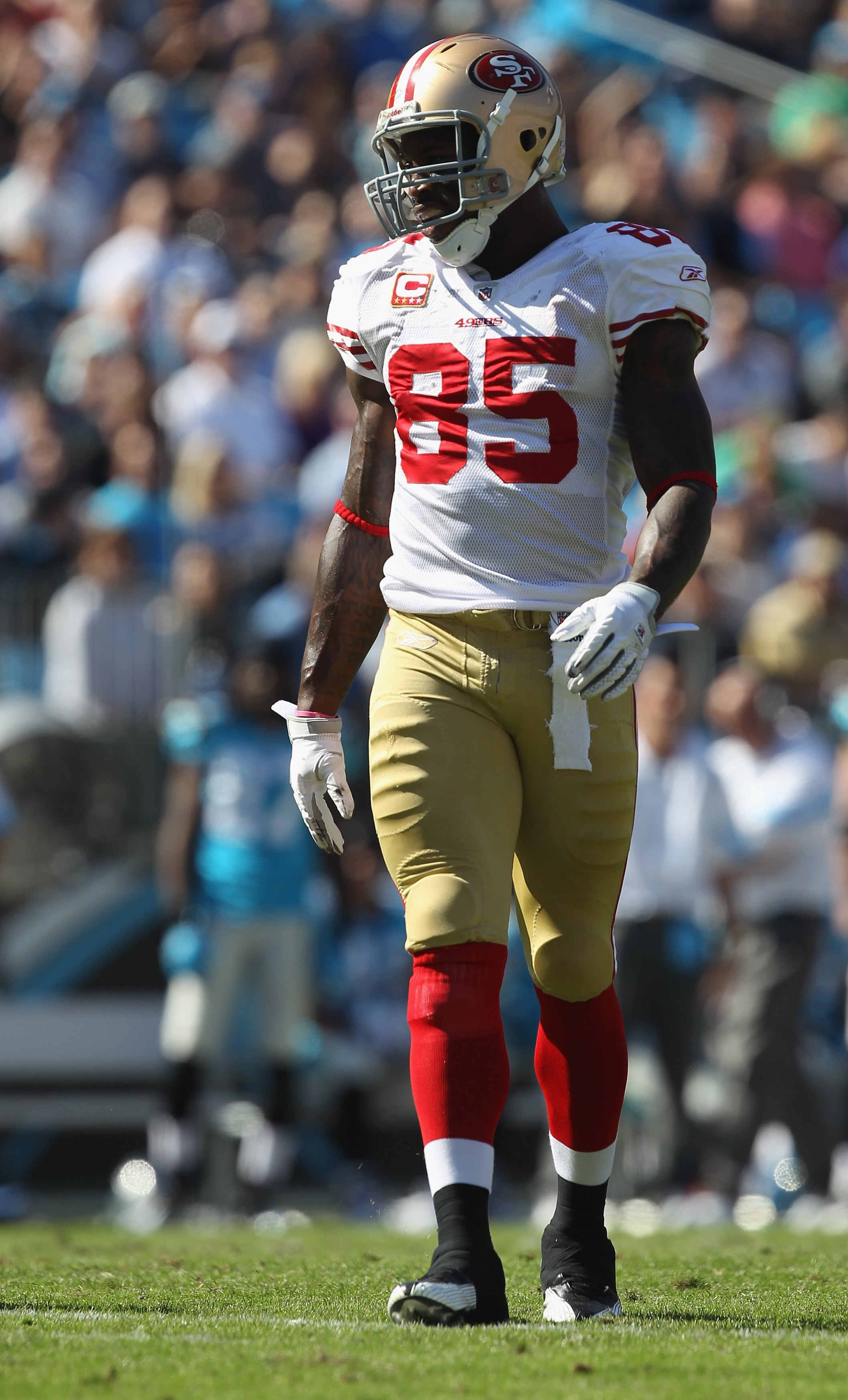 CHARLOTTE, NC - OCTOBER 24:  Vernon Davis #85 of the San Francisco 49ers against the Carolina Panthers during their game at Bank of America Stadium on October 24, 2010 in Charlotte, North Carolina.  (Photo by Streeter Lecka/Getty Images)