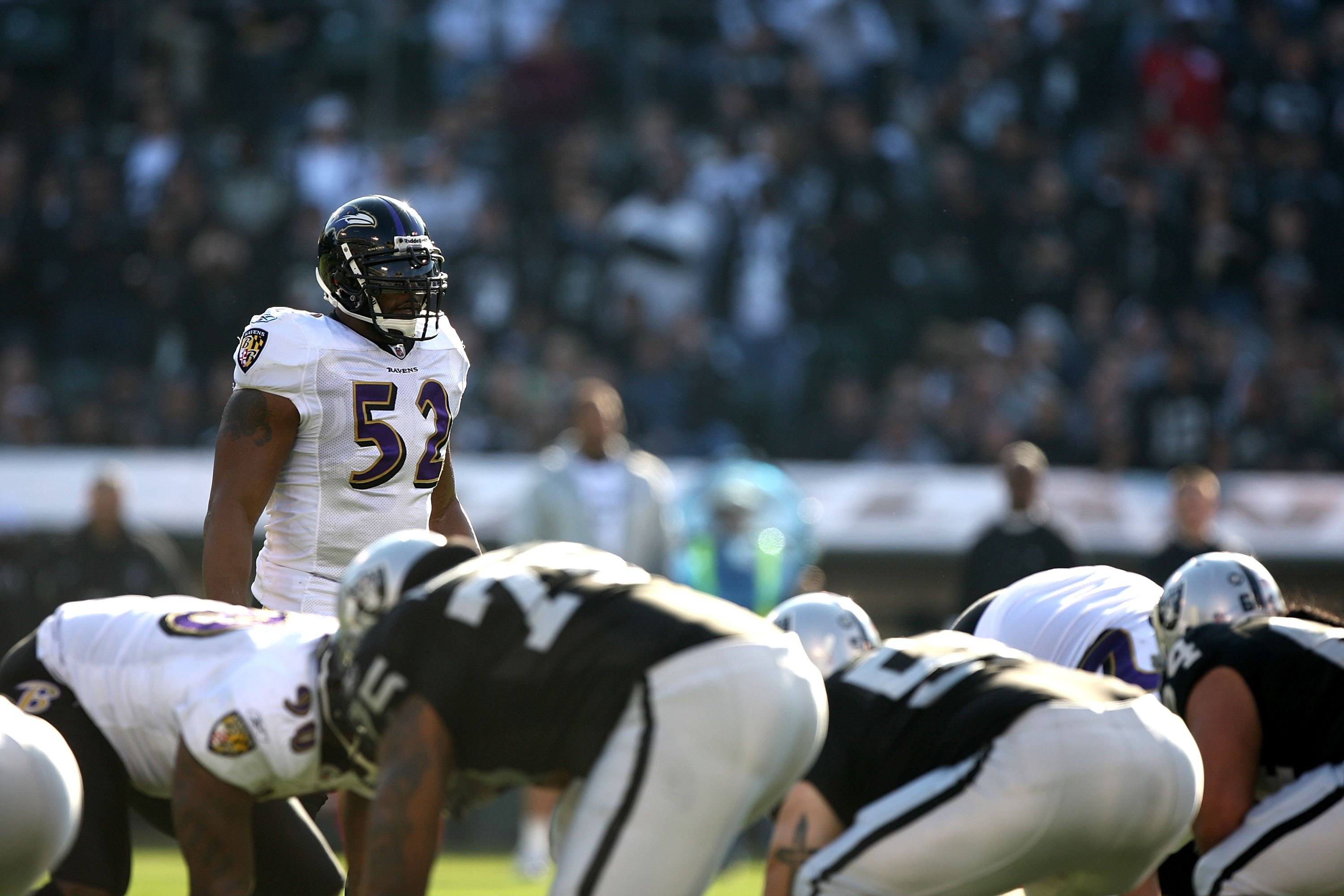 OAKLAND, CA - JANUARY 03:  Ray Lewis #52 of the Baltimore Ravens in action against the Oakland Raiders during an NFL game at Oakland-Alameda County Coliseum on January 3, 2010 in Oakland, California.  (Photo by Jed Jacobsohn/Getty Images)