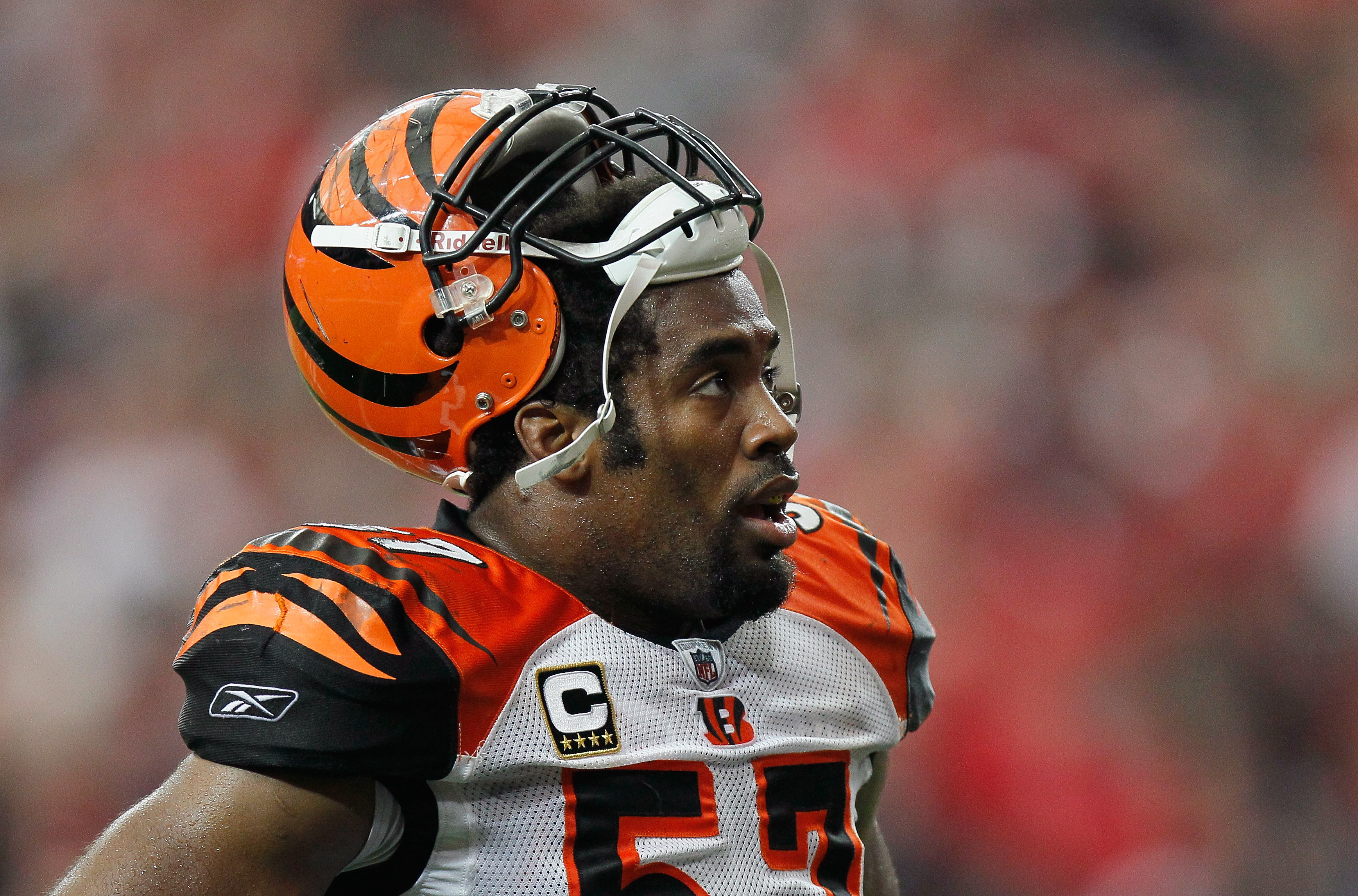 ATLANTA - OCTOBER 24:  Dhani Jones #57 of the Cincinnati Bengals against the Atlanta Falcons at Georgia Dome on October 24, 2010 in Atlanta, Georgia.  (Photo by Kevin C. Cox/Getty Images)