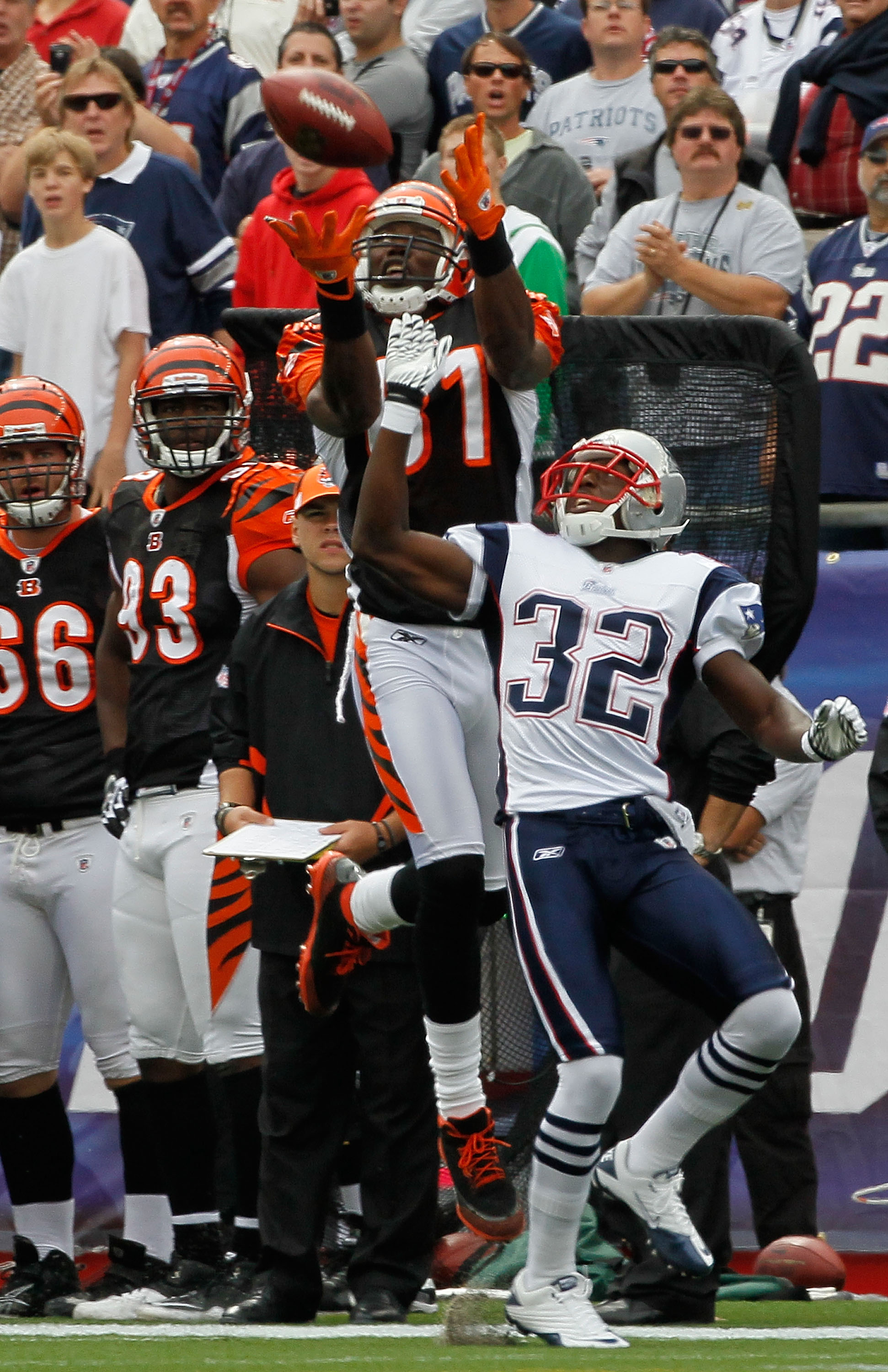 FOXBORO, MA - SEPTEMBER 12:  Terrell Owens #81 of the Cincinnati Bengals is unable to hold on to a pass against the defense of Devin McCarthy #32 of the New England Patriots during the NFL season opener  at Gillette Stadium on September 12, 2010 in Foxbor