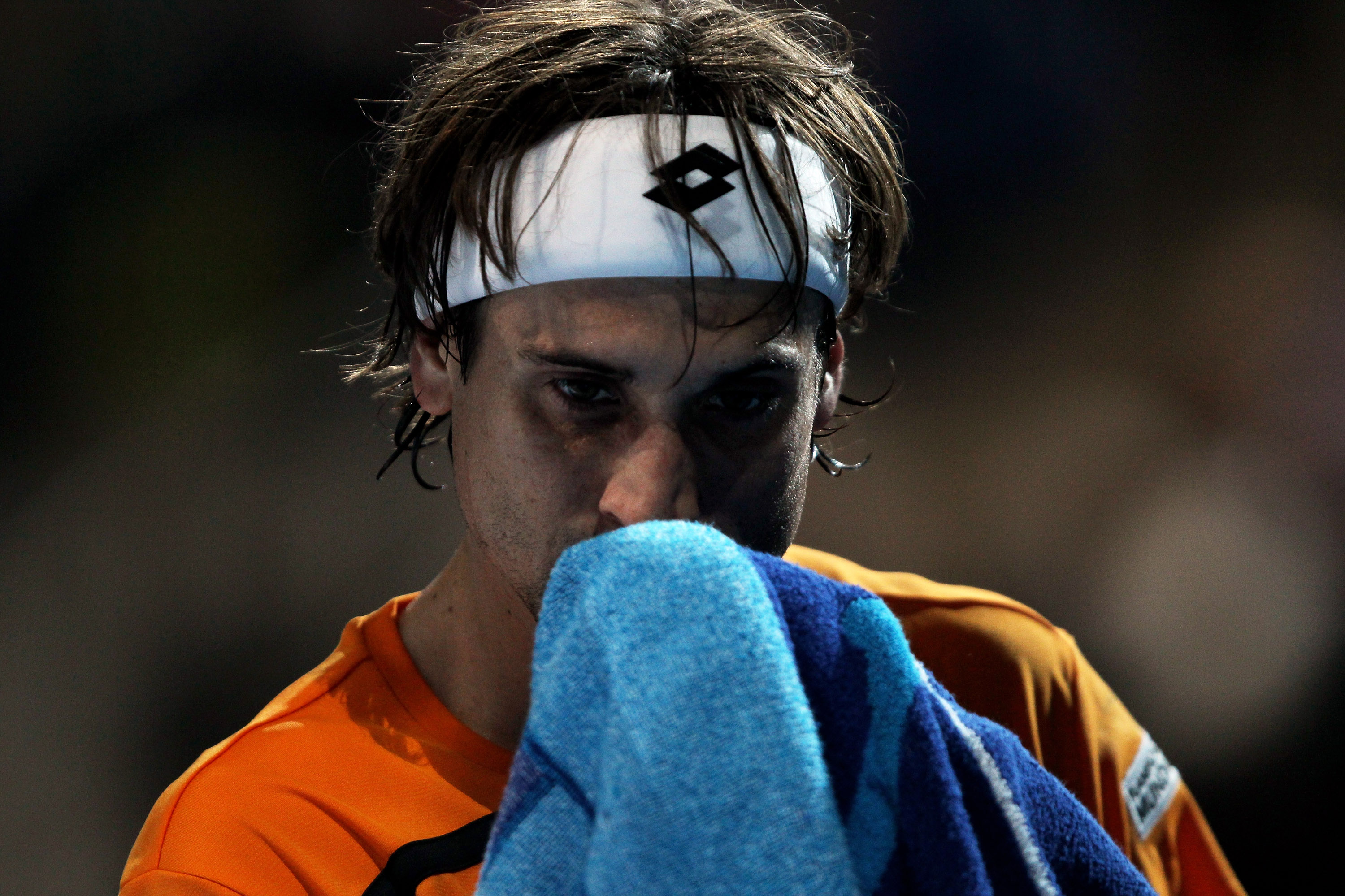 David Ferrer finished the year at World Number 7.
