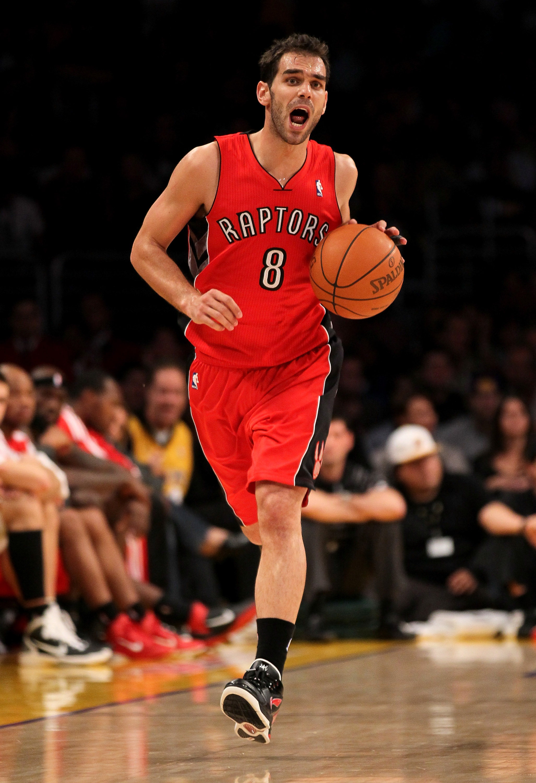 LOS ANGELES, CA - NOVEMBER 05:  Jose Calderon #8 of the Toronto Raptors shouts as he brings the ball up the court against the Los Angeles Lakers at Staples Center on November 5, 2010 in Los Angeles, California.  The Lakers won 108-102.   NOTE TO USER: Use