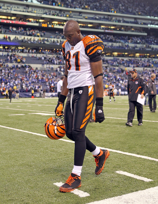 Terrell Owens pondering the 2010 Bengal season