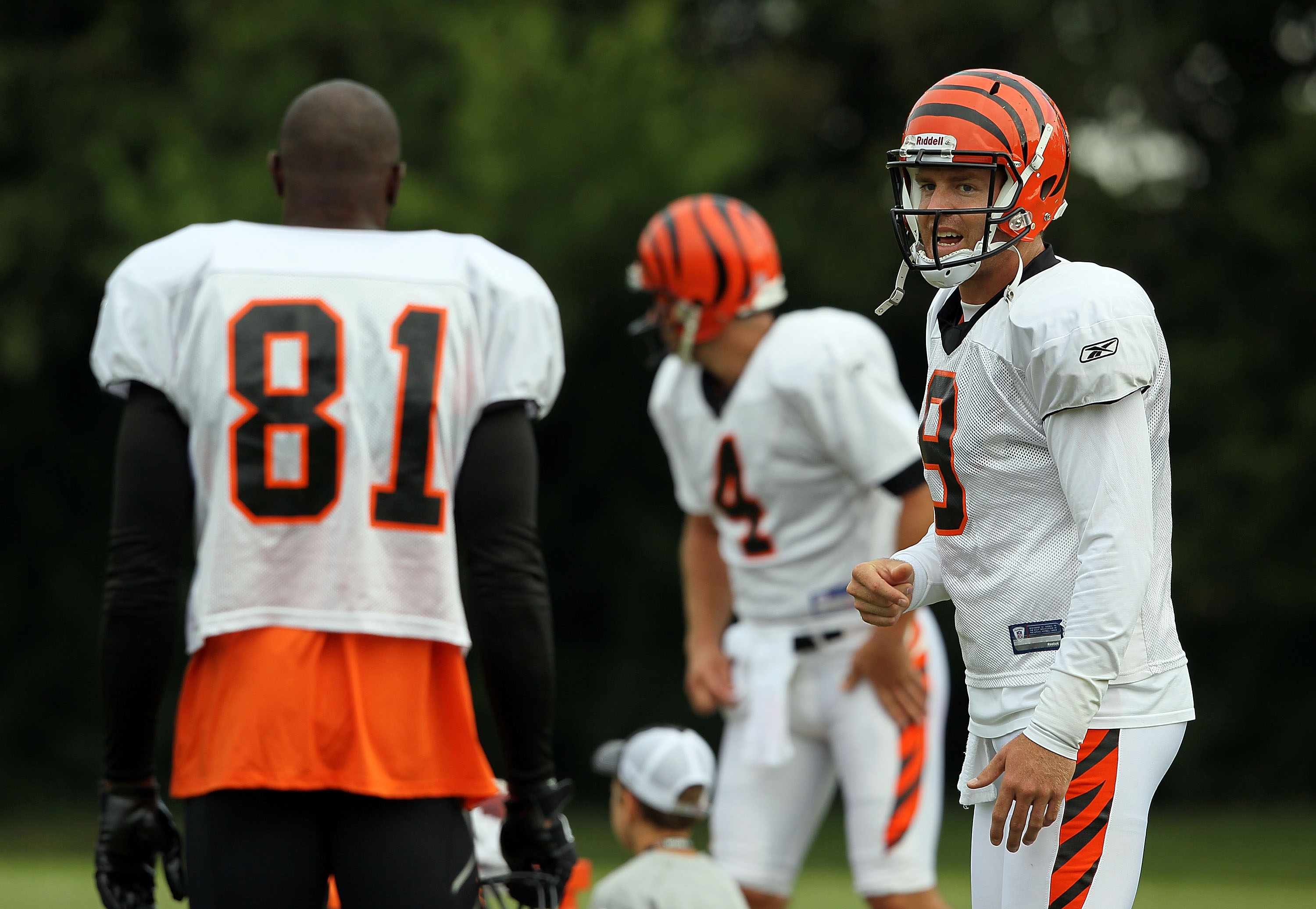 GEORGETOWN, KY - JULY 31:  Carson Palmer #9 (right) of the Cincinnati Bengals talks with Terrell Owens #81 during the Bengals training camp at Georgetown College on July 31, 2010 in Georgetown, Kentucky.  (Photo by Andy Lyons/Getty Images)