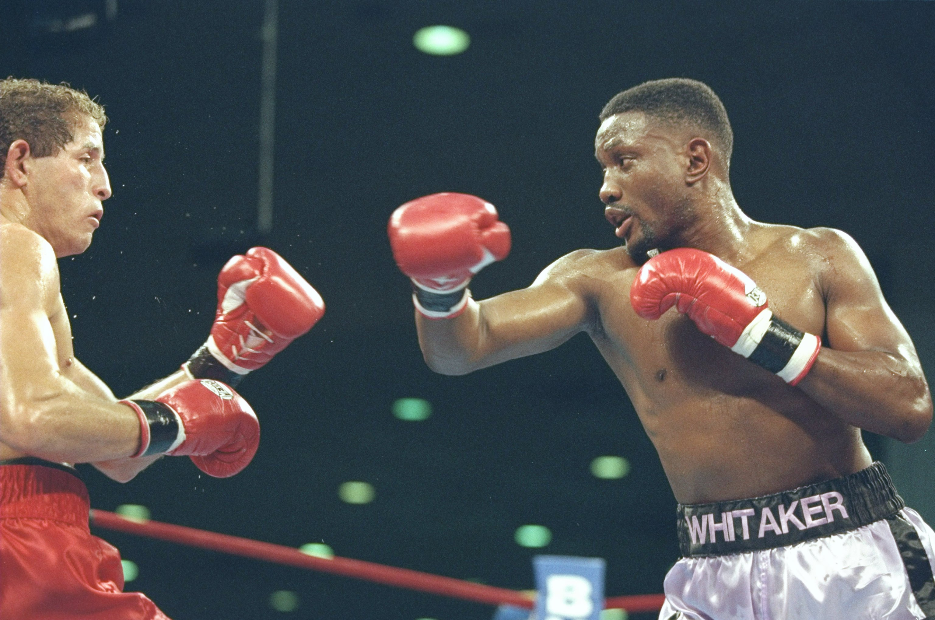 18 Nov 1995:  Pernell Whitaker and Jake Rodriguez are ready for action during the bout.  Whitaker won the fight with a knockout in the sixth round. Mandatory Credit: Al Bello  /Allsport