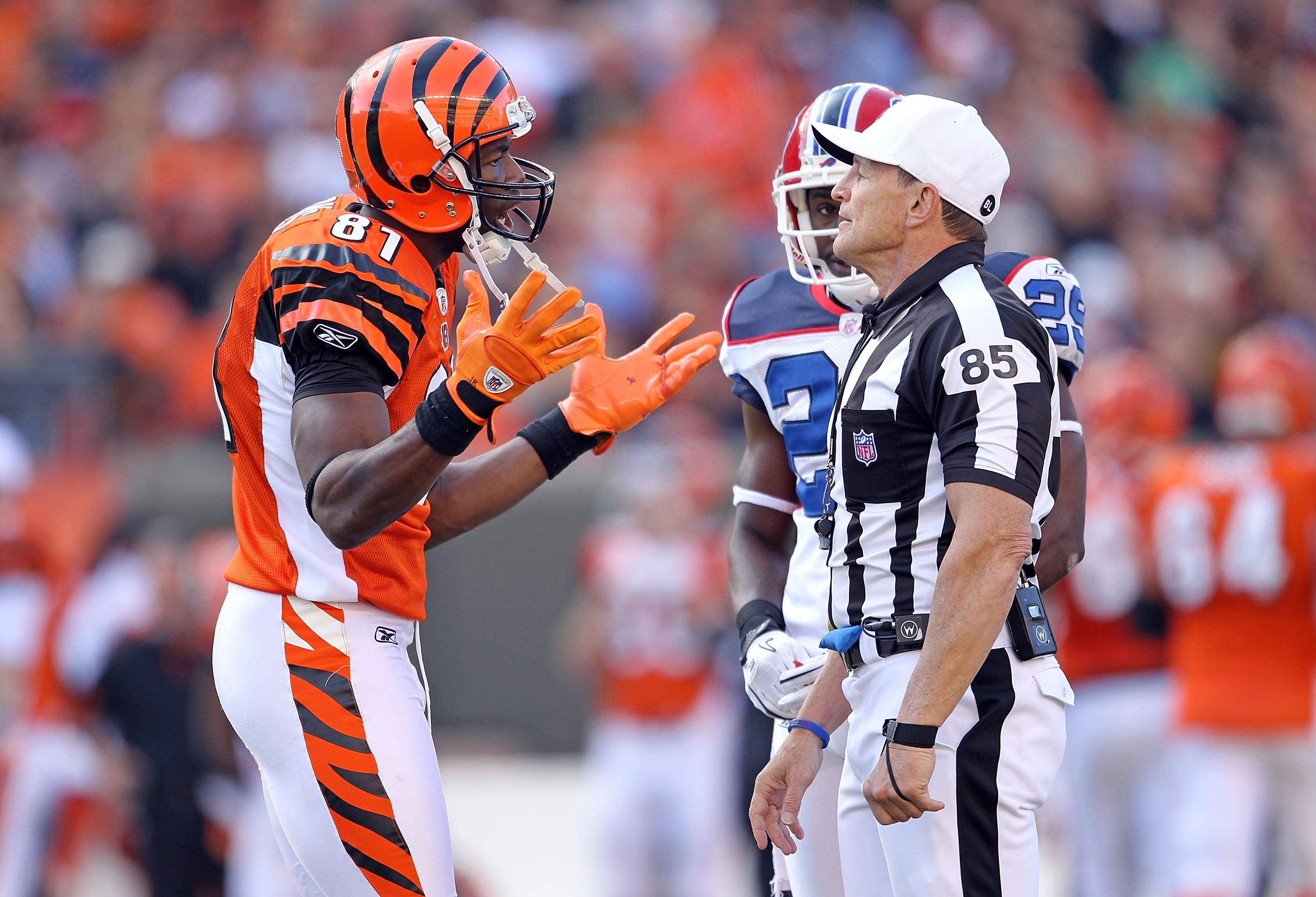 CINCINNATI - NOVEMBER 21:  Terrell Owens #81 of the Cincinnati Bengals pleads his case with game offical Ed Hochuli during the Bengals 49-31 loss to the Buffalo Bills at Paul Brown Stadium on November 21, 2010 in Cincinnati, Ohio.  (Photo by Andy Lyons/Ge
