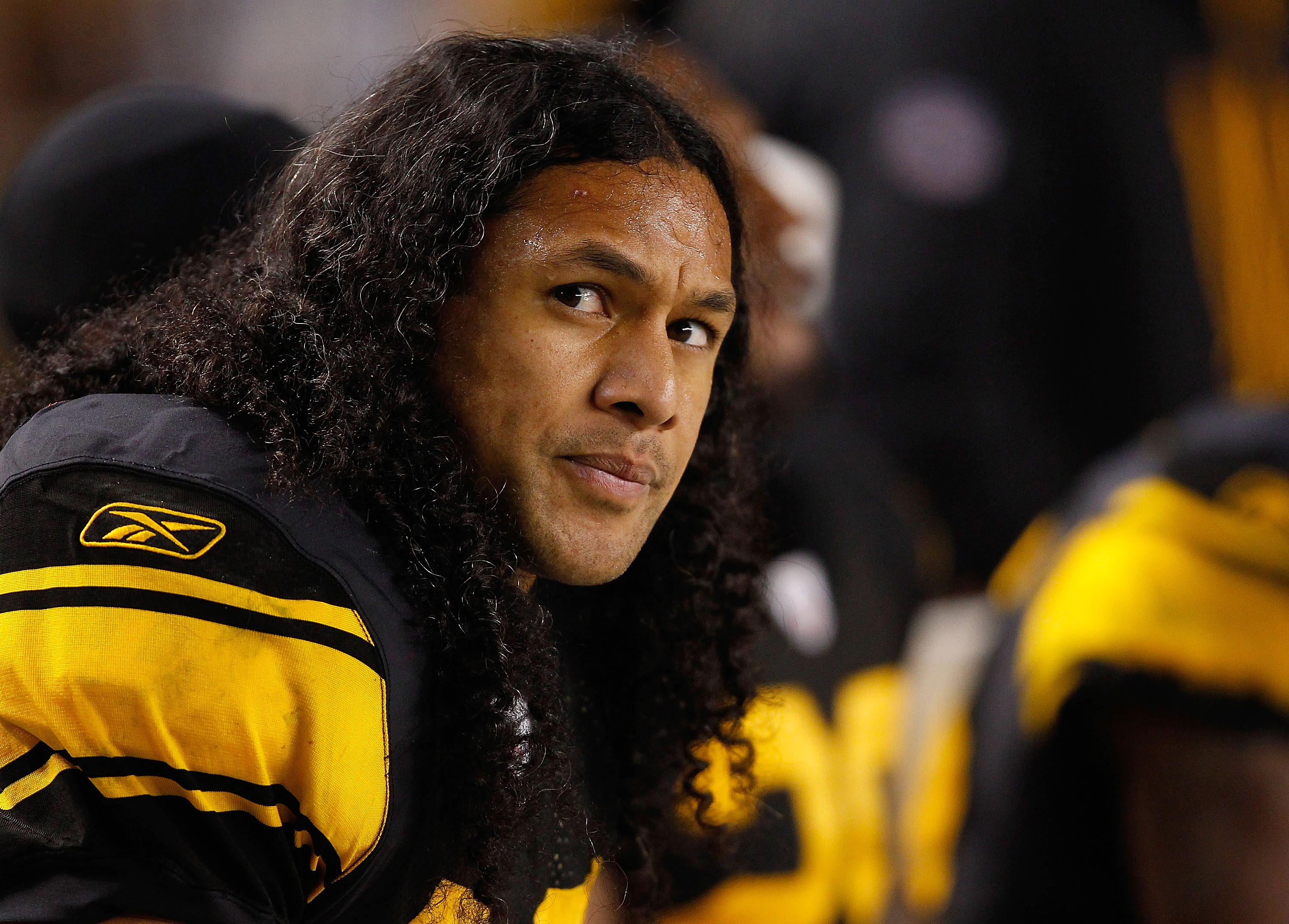 PITTSBURGH - NOVEMBER 14:  Troy Polamalu #43 of the Pittsburgh Steelers watches the game against the New England Patriots from the bench during the game on November 14, 2010 at Heinz Field in Pittsburgh, Pennsylvania.  (Photo by Jared Wickerham/Getty Imag