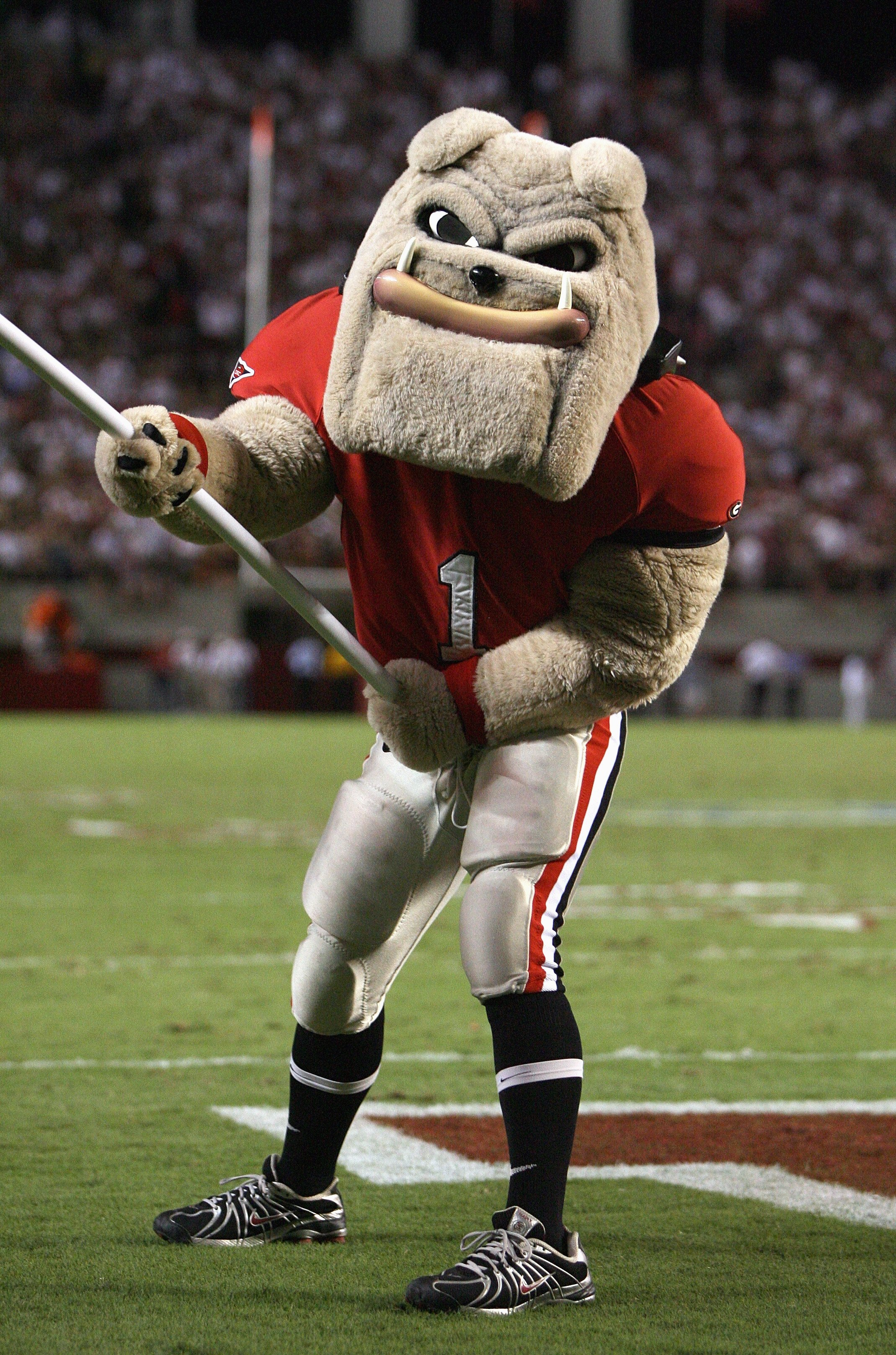 TUSCALOOSA, AL - SEPTEMBER 22: Mascot of the Georgia Bulldogs waves a flag on the field during the game against the Alabama Crimson Tide at Bryant-Denny Stadium September 22, 2007 in Tuscaloosa, Alabama. Georgia defeated Alabama 26-23 in overtime. (Photo
