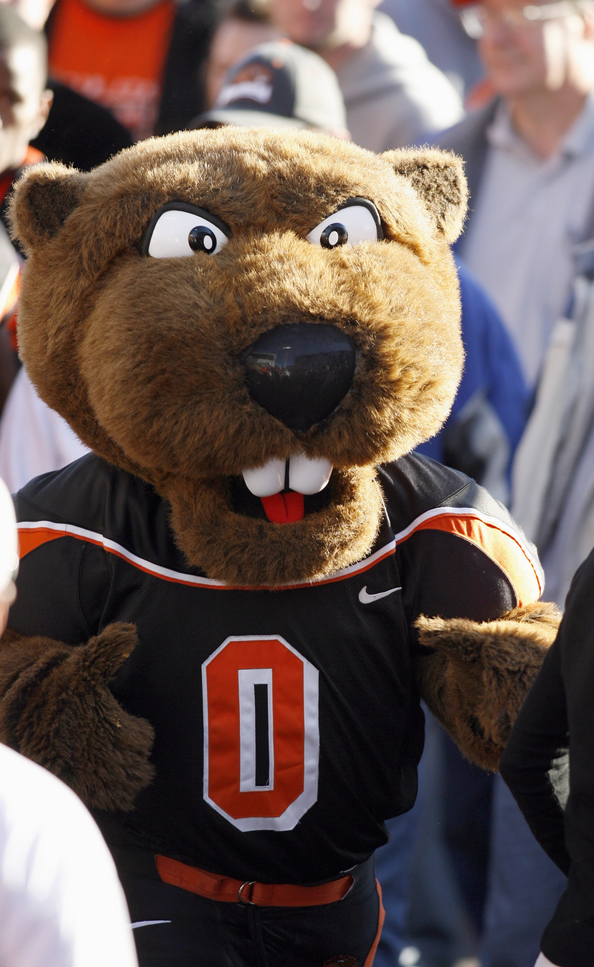 CORVALLIS, OR - OCTOBER 28:  Mascot 'Benny' of the Oregon State Beavers mixes with the crowd after the game against the Southern California Trojans at Reser Stadium on October 28, 2006 in Corvallis, Oregon. The Beavers defeated the Trojans 33-31. (Photo b