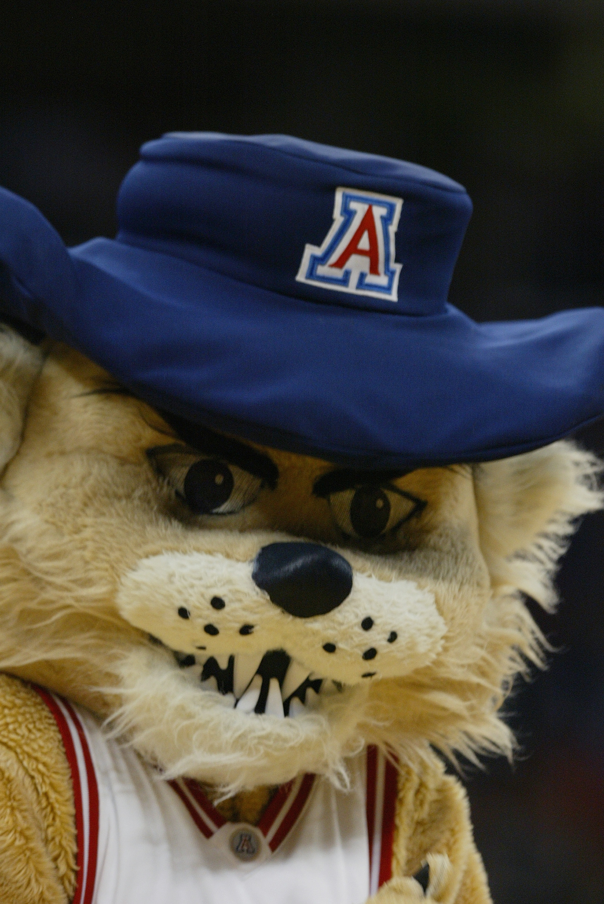 RALEIGH, NC - MARCH 18:  Wilbur the Wildcats, the mascot of the Arizona Wildcats, during the first round game of the NCAA Division I Men's Basketball Tournament against the Seton Hall Pirates at the RBC Center on March 18, 2004 in Raleigh, North Carolina.
