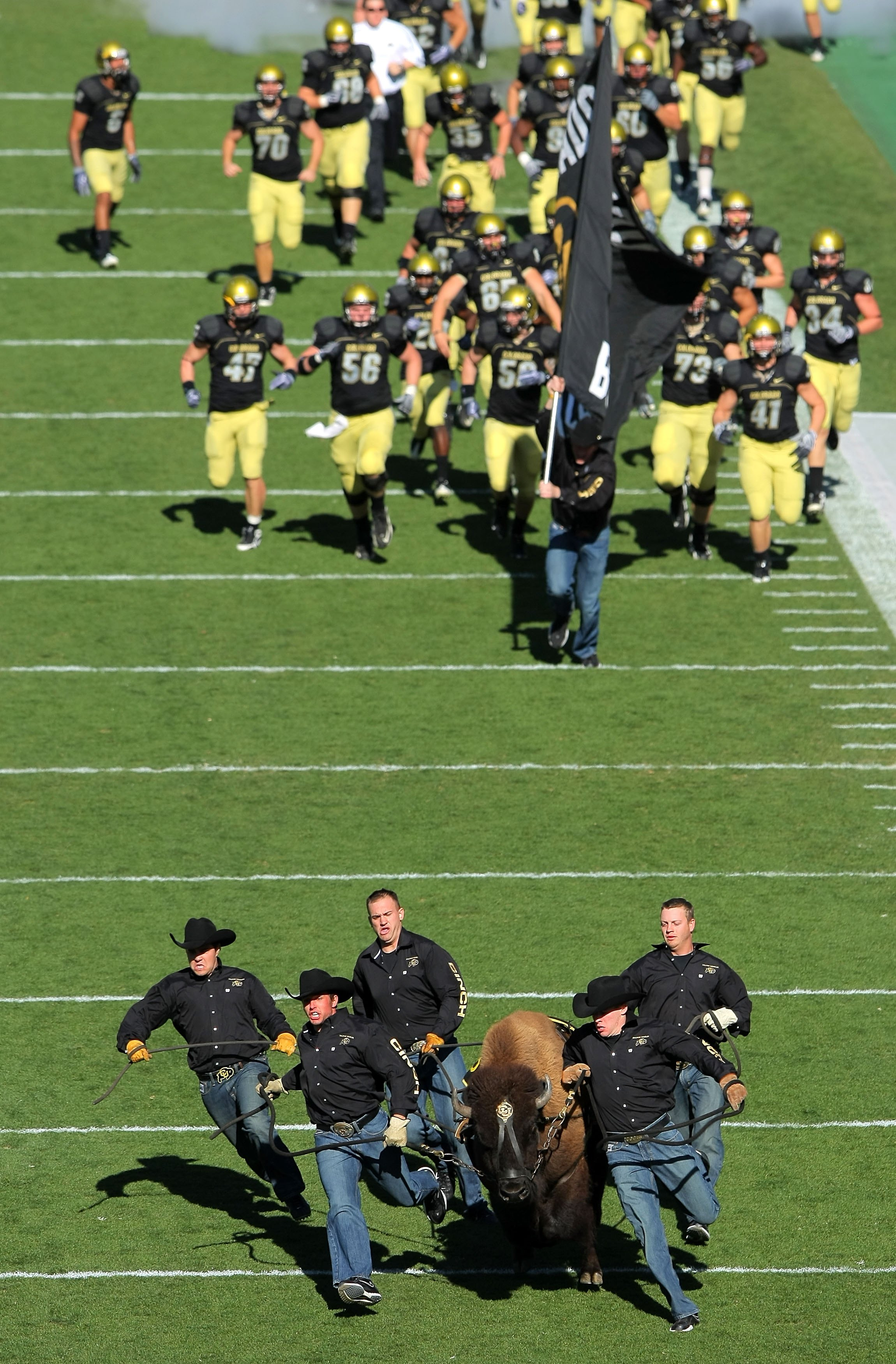 BOULDER, CO - NOVEMBER 07:  The team of 'Ralphie Runners' escort Ralphie V onto the field ahead of the team before the Texas A&M Aggies face the Colorado Buffaloes during NCAA college football action at Folsom Field on November 7, 2009 in Boulder, Colorad