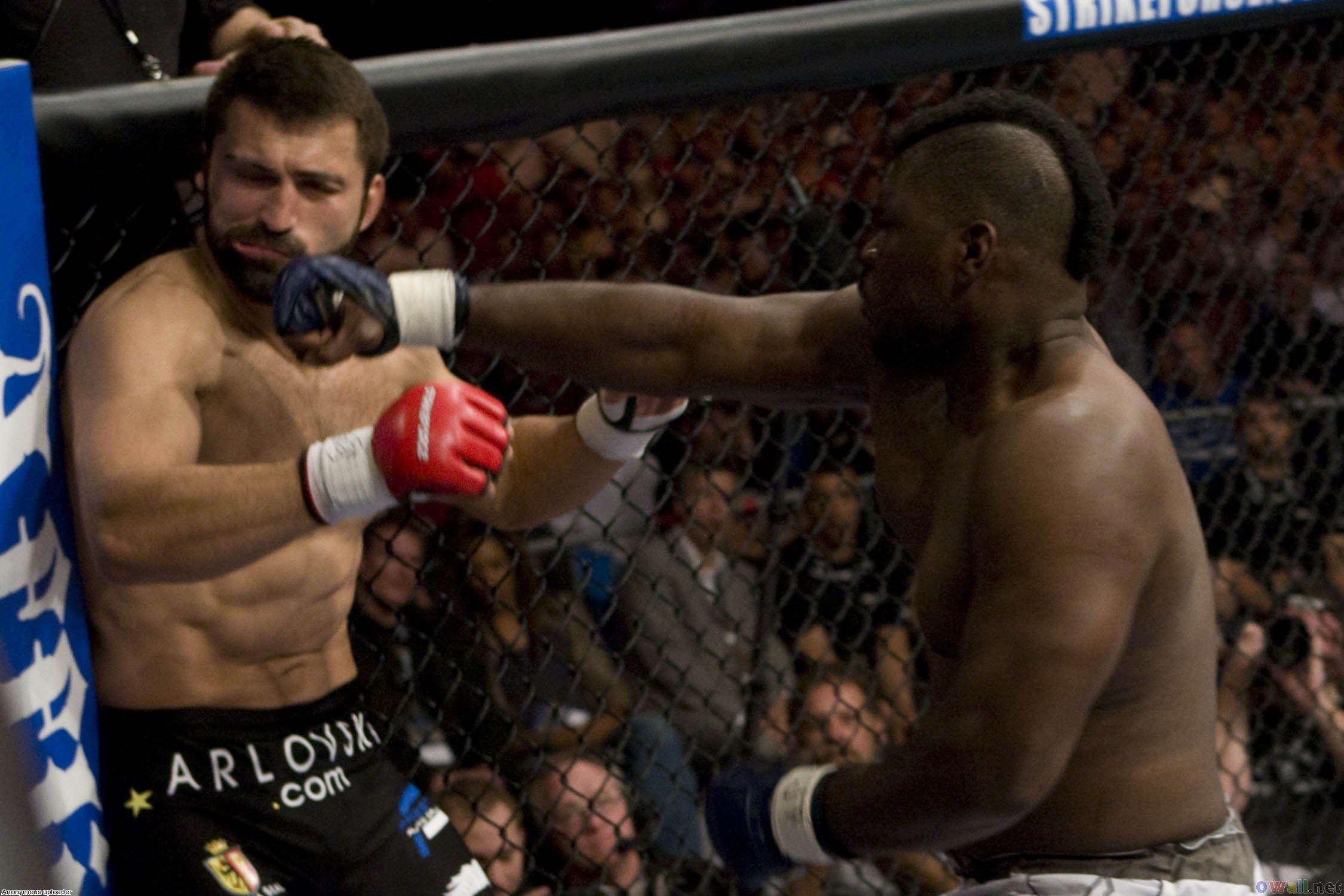 Andrei Arlovski and 10 MMA Fighters Who Couldn't Live Up to