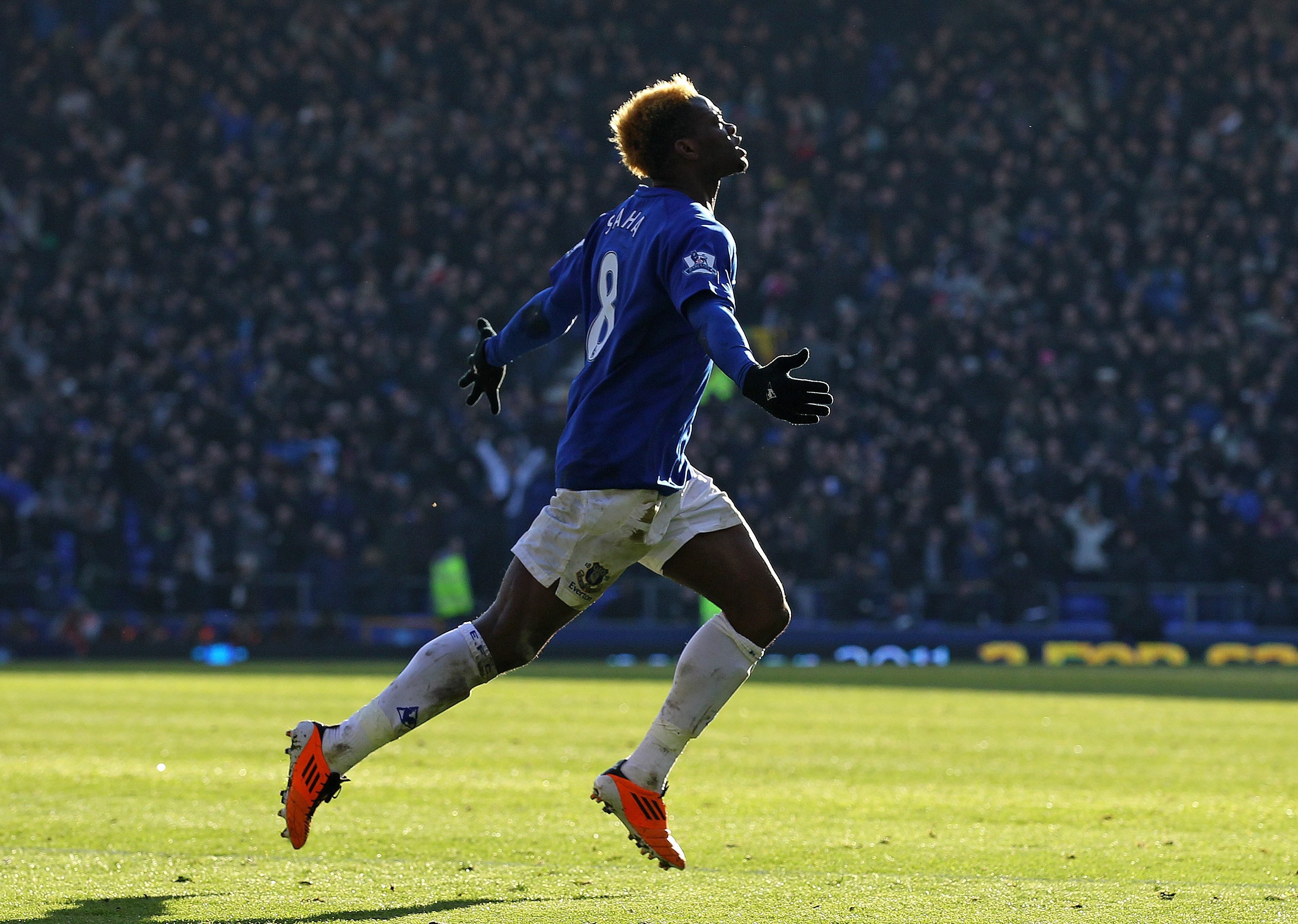 LIVERPOOL, ENGLAND - JANUARY 29:  Louis Saha of Everton celebrates scoring the opening goal during the FA Cup sponsored by E.On Fourth Round match between Everton and Chelsea at Goodison Park on January 29, 2011 in Liverpool, England.  (Photo by Alex Live