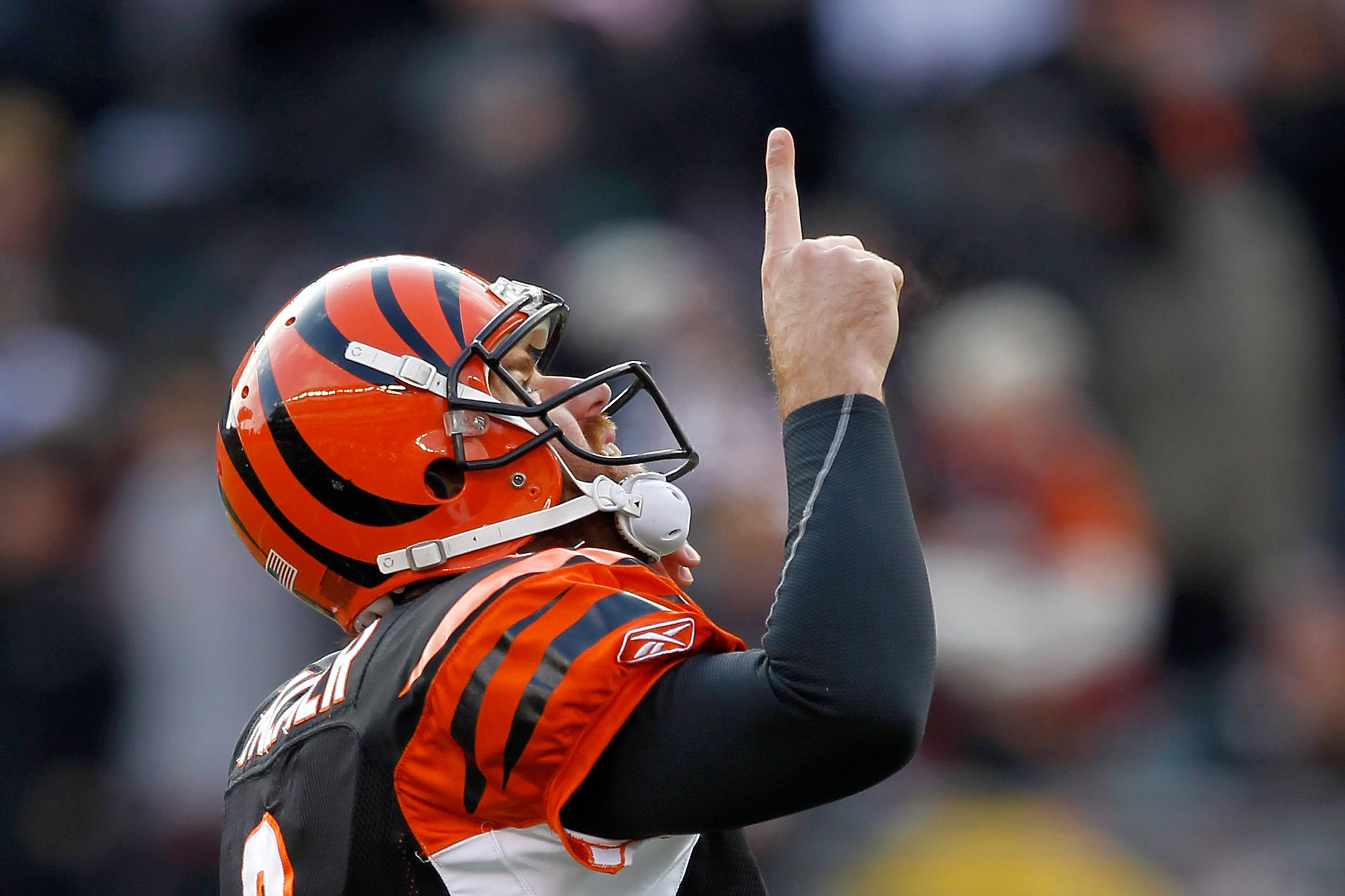 CINCINNATI, OH - DECEMBER 19: Quarterback Carson Palmer #9 of the Cincinnati Bengals celebrates throwing a touchdown against the Cleveland Browns at Paul Brown Stadium on December 19, 2010 in Cincinnati, Ohio.  (Photo by Matthew Stockman/Getty Images)