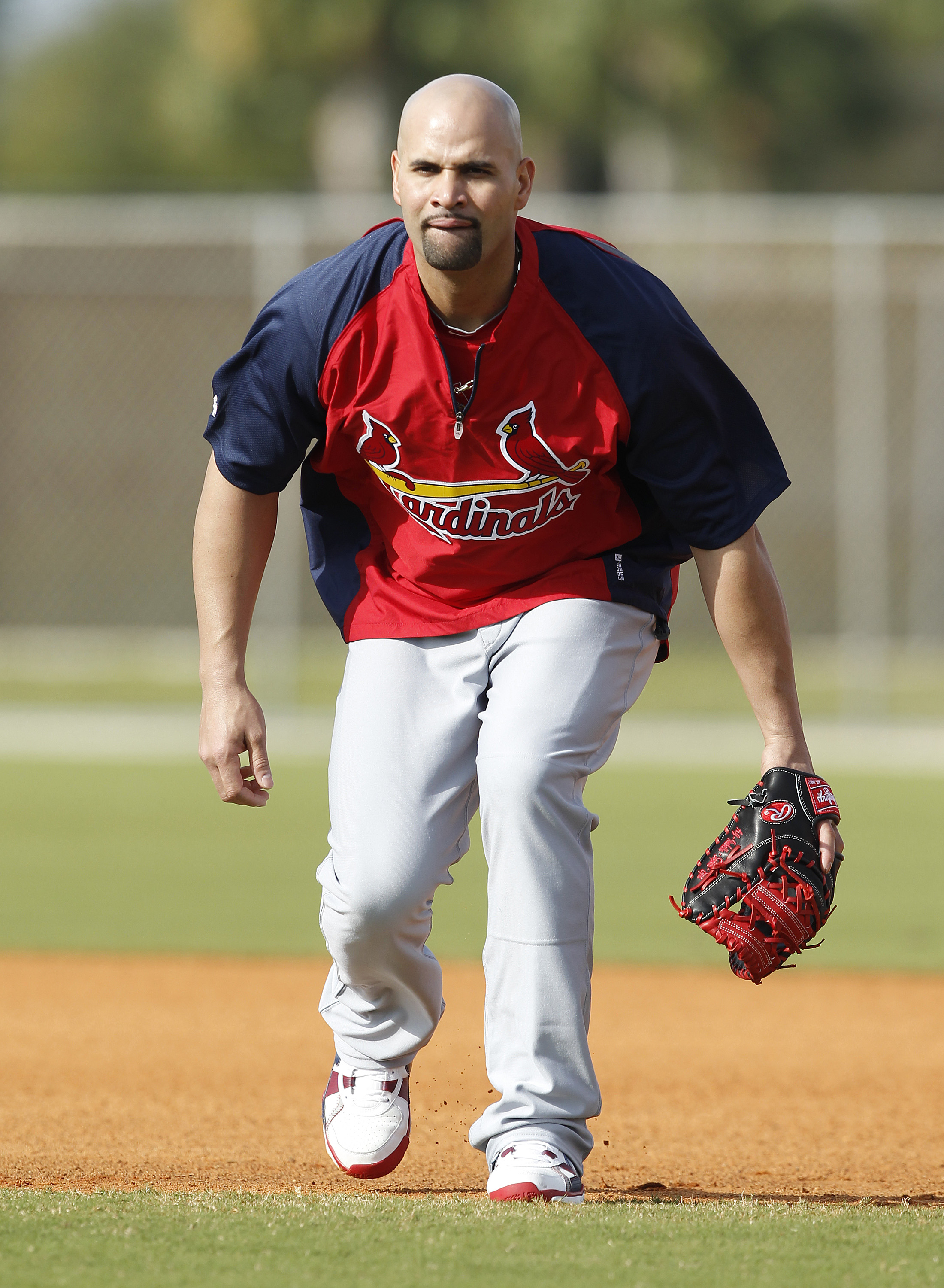 JUPITER, FL - FEBRUARY 17: Albert Pujols # 5 of the St. Louis Cardinals takes fielding practice at Roger Dean Stadium on February 17, 2011 in Jupiter, Florida. (Photo by Joel Auerbach/Getty Images)