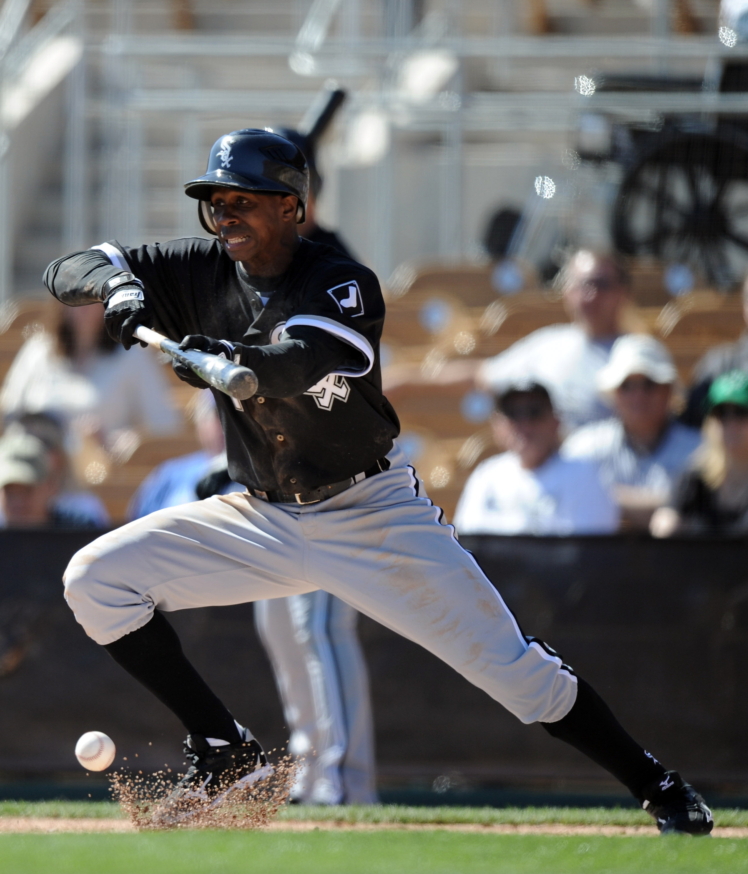 PHOENIX, AZ - FEBRUARY 28:  Juan Pierre #1 of the Chicago White Sox bunts for a single against the Los Angeles Dodgers during spring training at Camelback Ranch on February 28, 2011 in Phoenix, Arizona.  (Photo by Harry How/Getty Images)