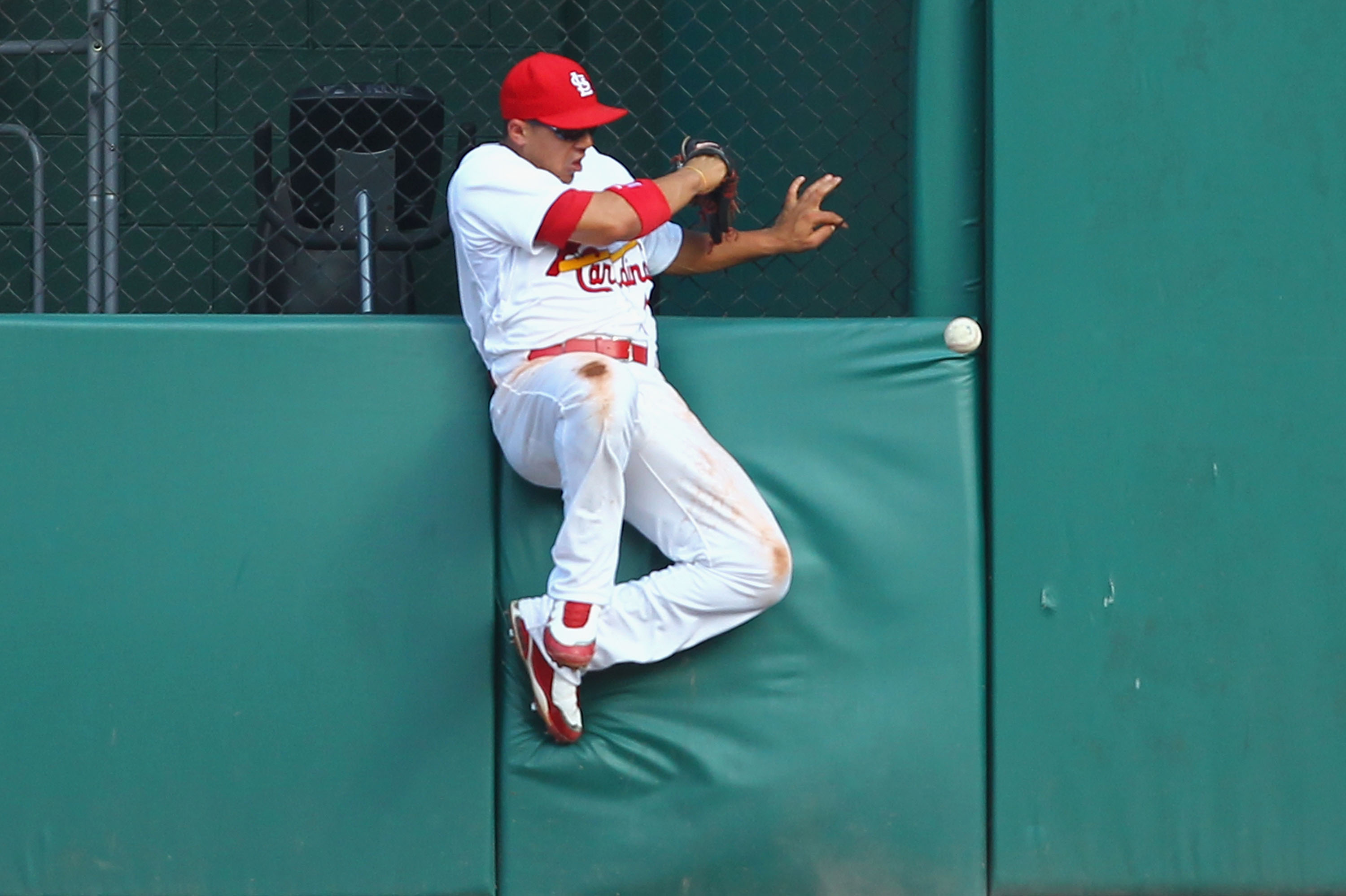 The Cardinals might not want to go to war with Jon Jay and Allen Craig as their DHs.