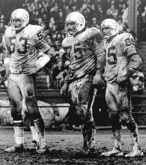 List of Miami Dolphins in the Pro Football Hall of Fame