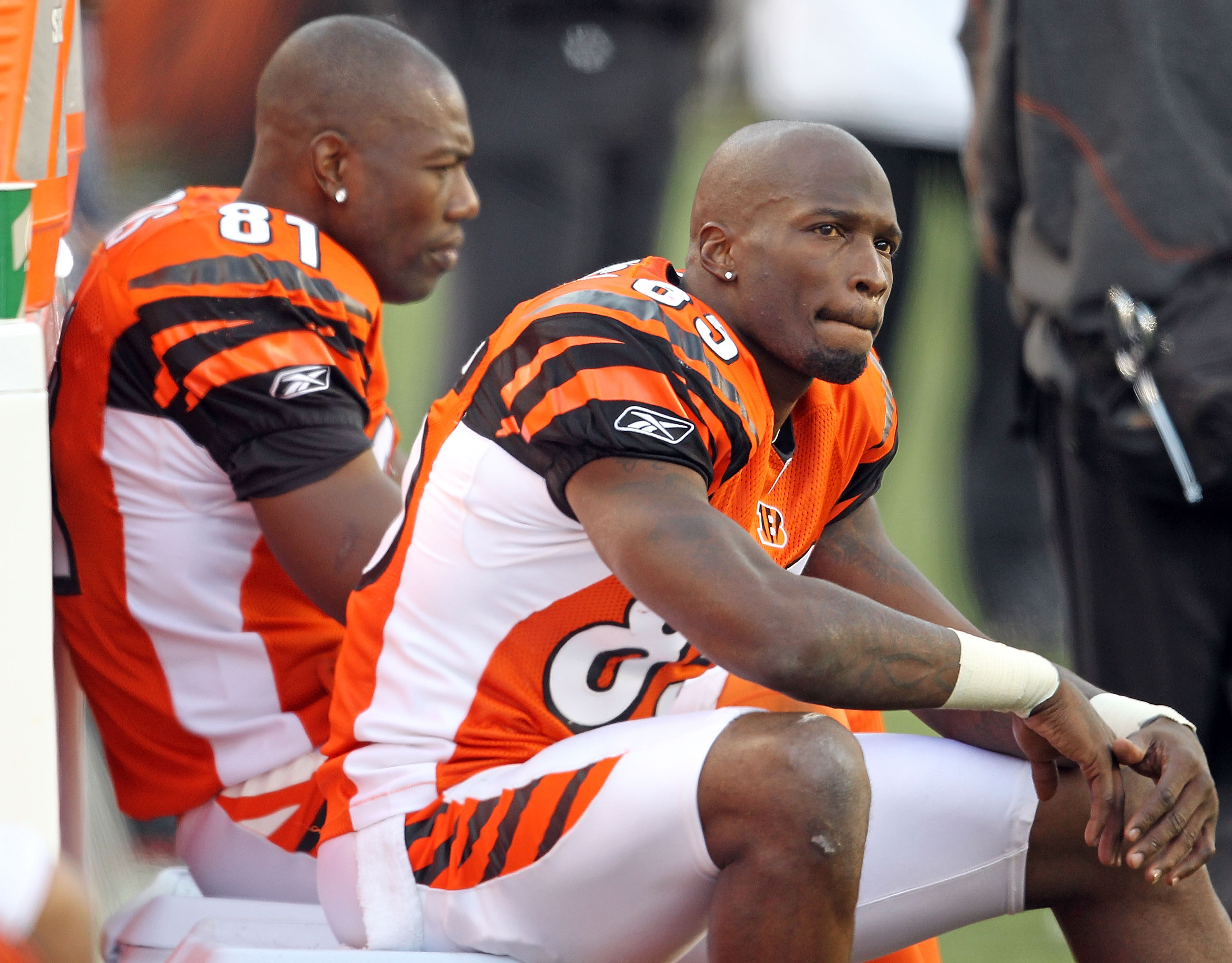 CINCINNATI - NOVEMBER 21:  Chad Ochocinco #85 and Terrell Owens #81 of the Cincinnati Bengals watch from the sideline during the final minutes of the Bengals 49-31 loss to the Buffalo Bills at Paul Brown Stadium on November 21, 2010 in Cincinnati, Ohio.