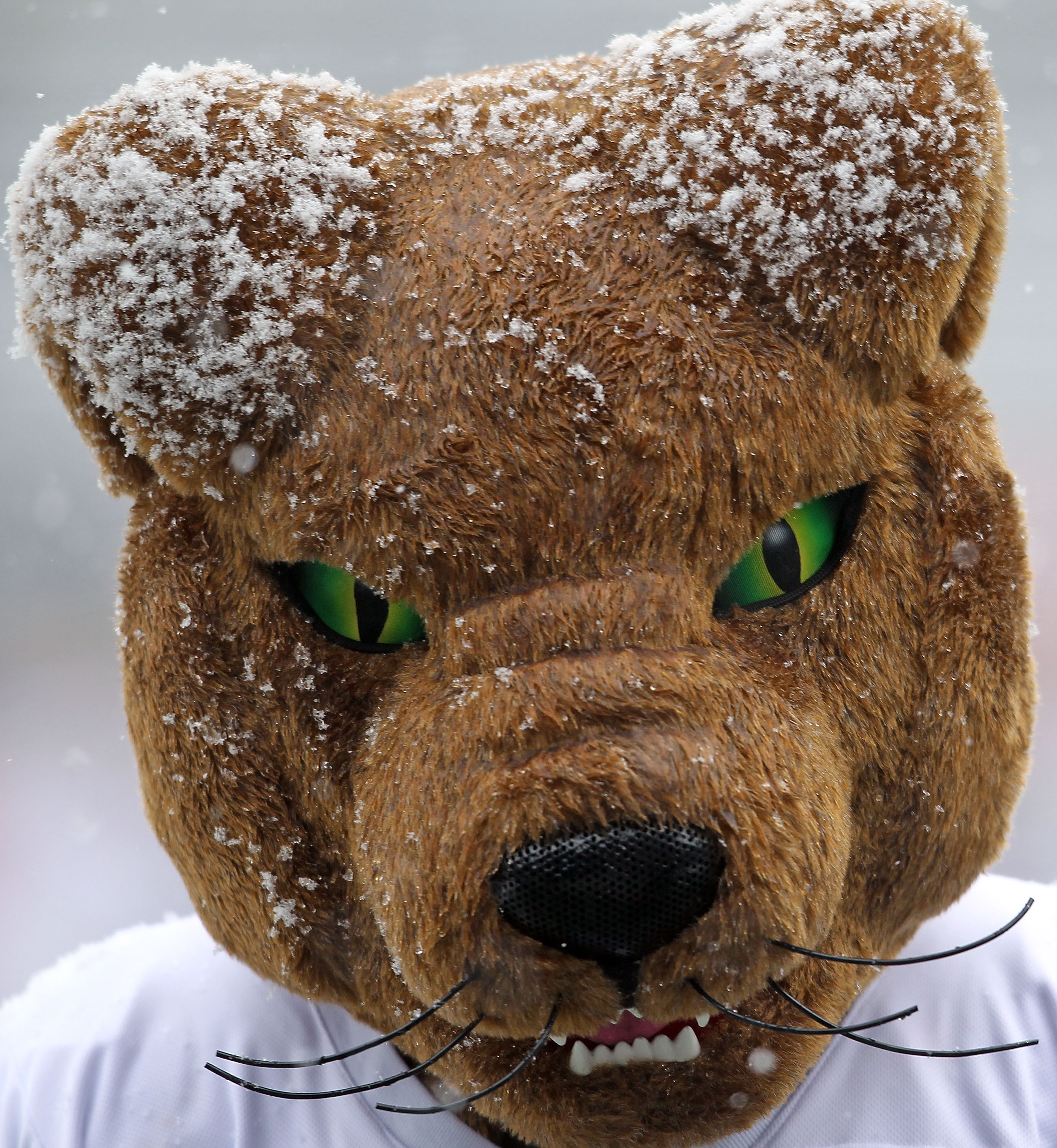 CINCINNATI, OH - DECEMBER 04:  The Pittsburg mascot is pictured covered in snow during the Big East Conference game between the the Pittsburgh Panthers and the Cincinnati Bearcats at Nippert Stadium on December 4, 2010 in Cincinnati, Ohio.  (Photo by Andy