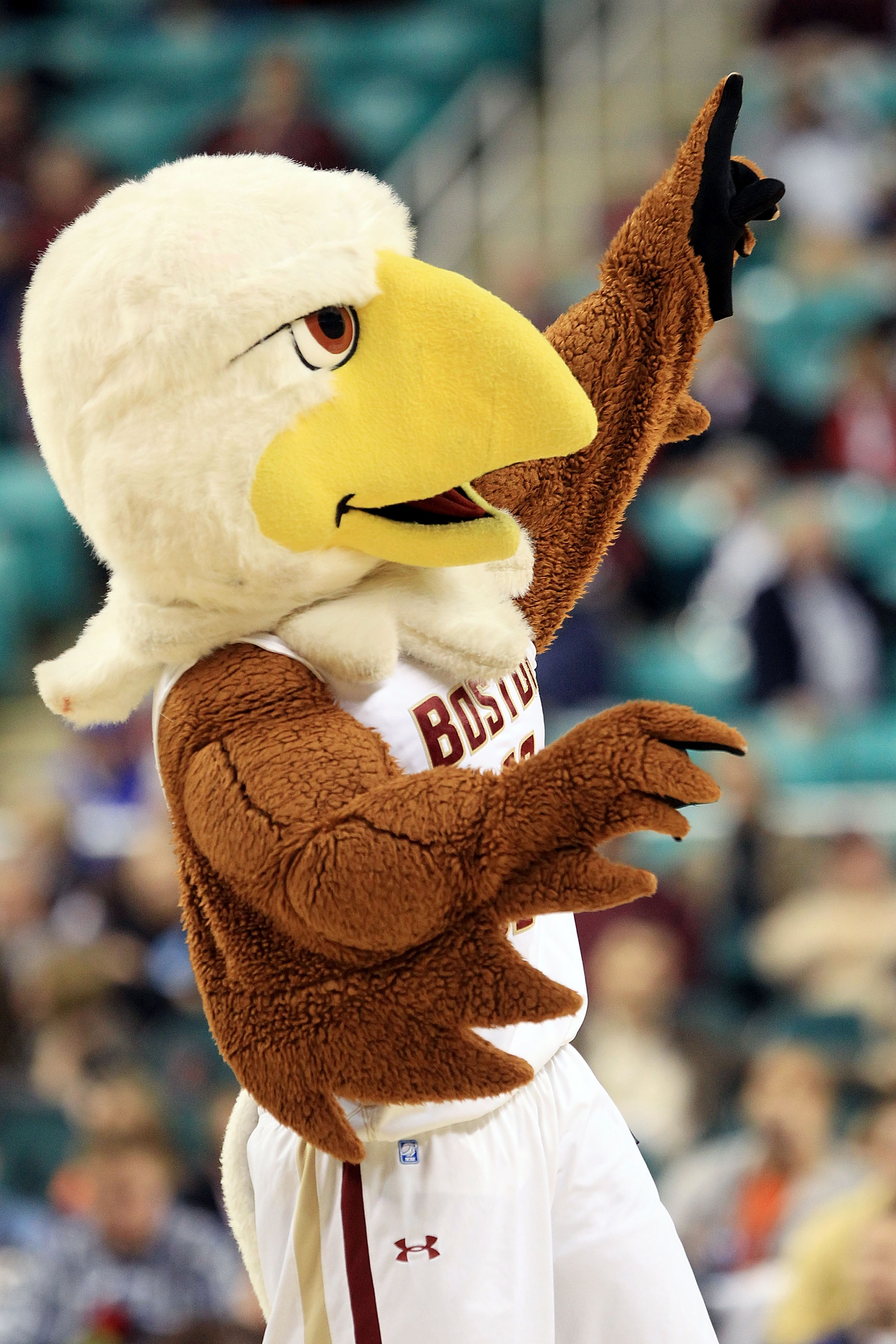 GREENSBORO, NC - MARCH 10:  Baldwin the Eagle, mascot of the Boston College Eagles, performs during the game against the Wake Forest Demon Deacons during the second half of the game in the first round of the 2011 ACC men's basketball tournament at the Gre