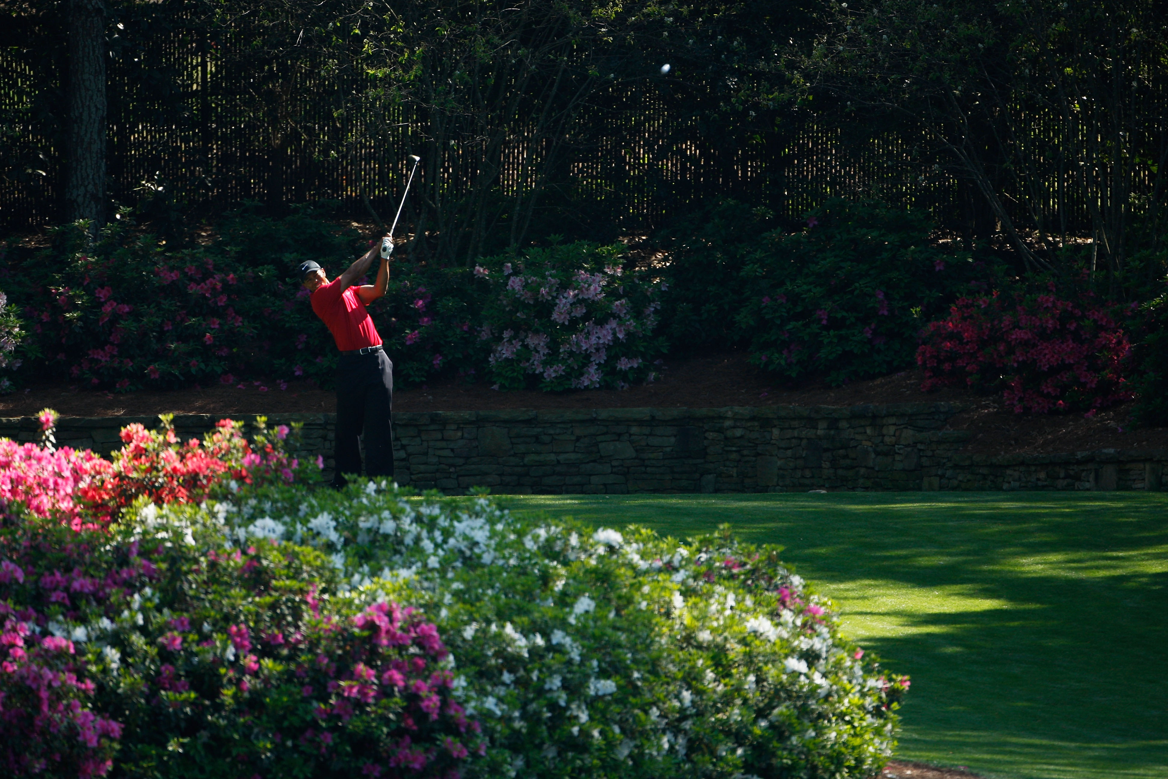 AUGUSTA, GA - APRIL 12:  Tiger Woods plays his tee shot on the 13th hole during the final round of the 2009 Masters Tournament at Augusta National Golf Club on April 12, 2009 in Augusta, Georgia.  (Photo by Jamie Squire/Getty Images)
