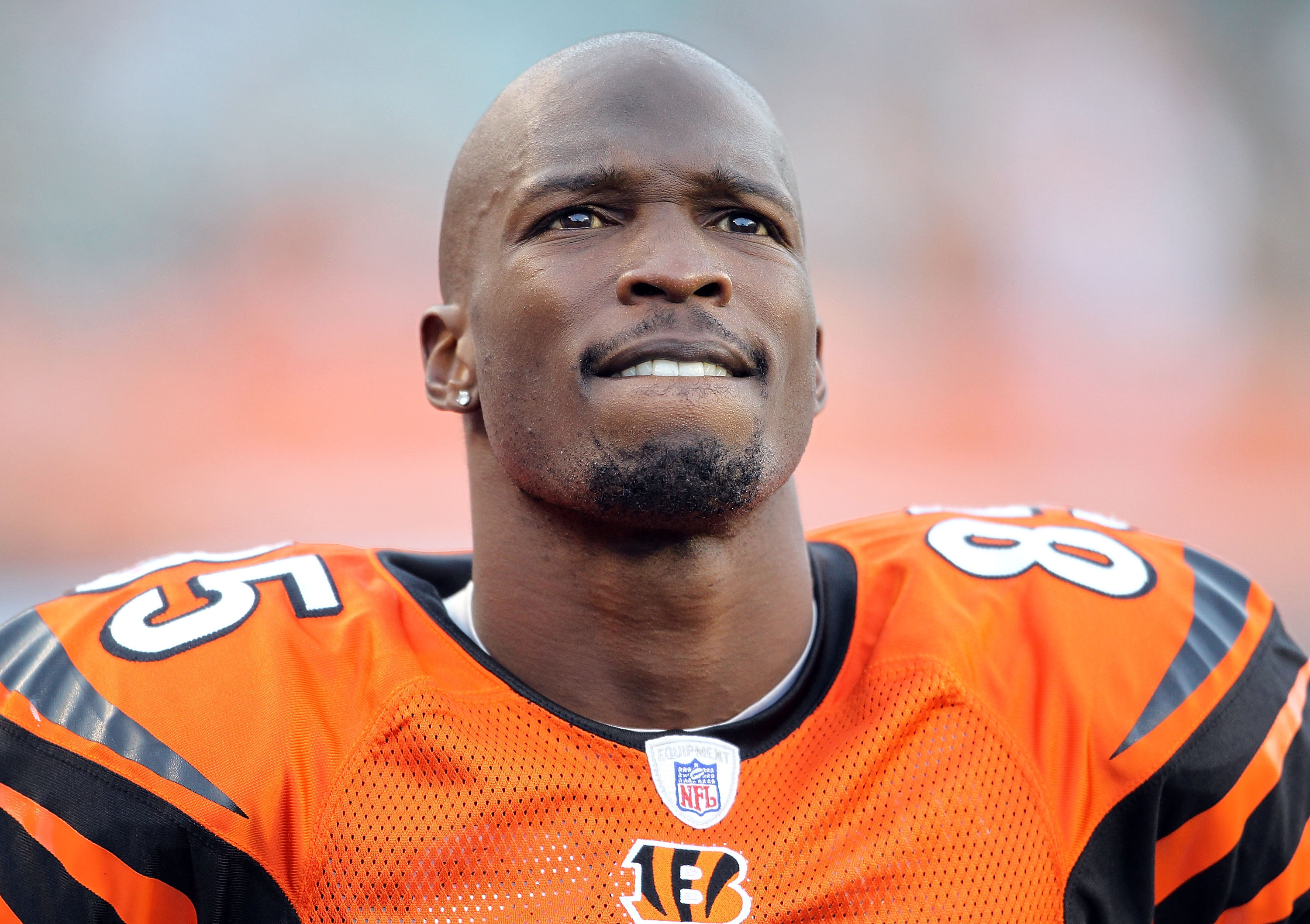 CINCINNATI - NOVEMBER 21:  Chad Ochocinco #85 of the Cincinnati Bengals watches the final minute of the Bengals 49-31 loss to the Buffalo Bills at Paul Brown Stadium on November 21, 2010 in Cincinnati, Ohio.  (Photo by Andy Lyons/Getty Images)