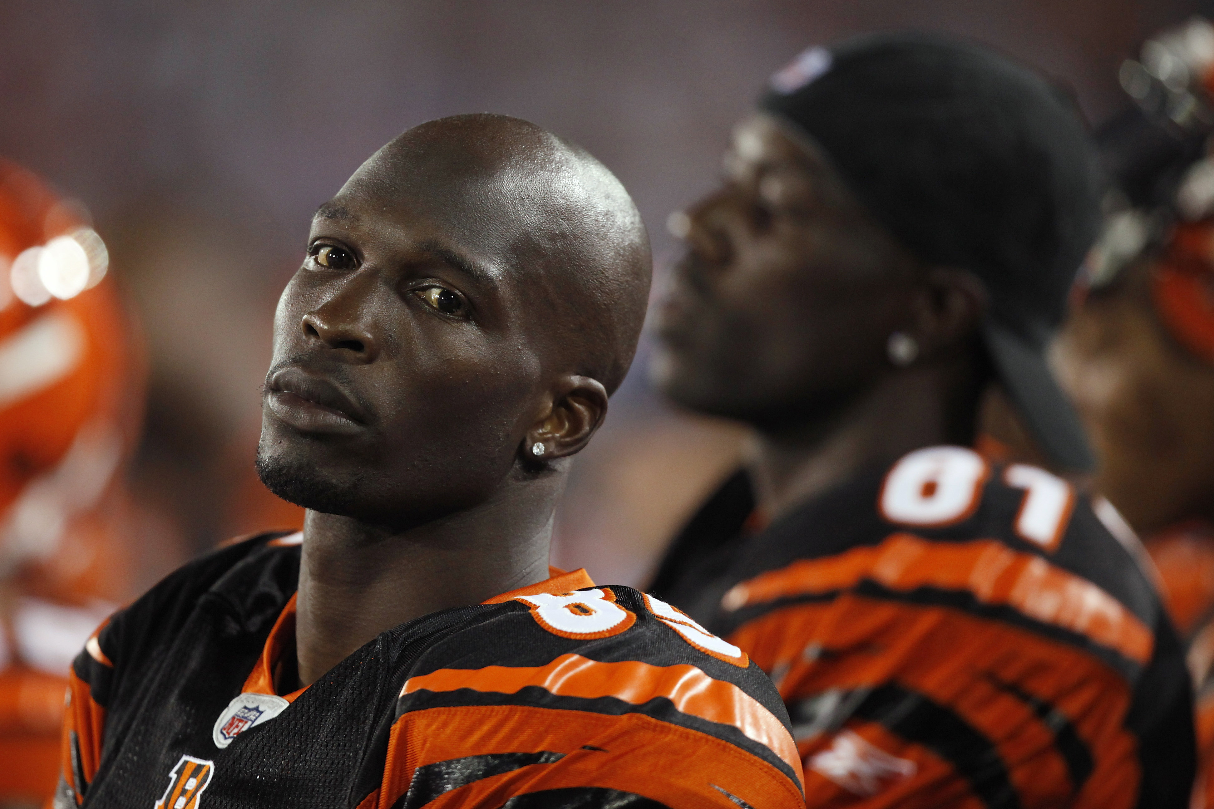 CANTON, OH - AUGUST 8: Chad Ochocinco #85 and Terrell Owens #81 of the Cincinnati Bengals look on against the Dallas Cowboys during the 2010 Pro Football Hall of Fame Game at the Pro Football Hall of Fame Field at Fawcett Stadium on August 8, 2010 in Cant