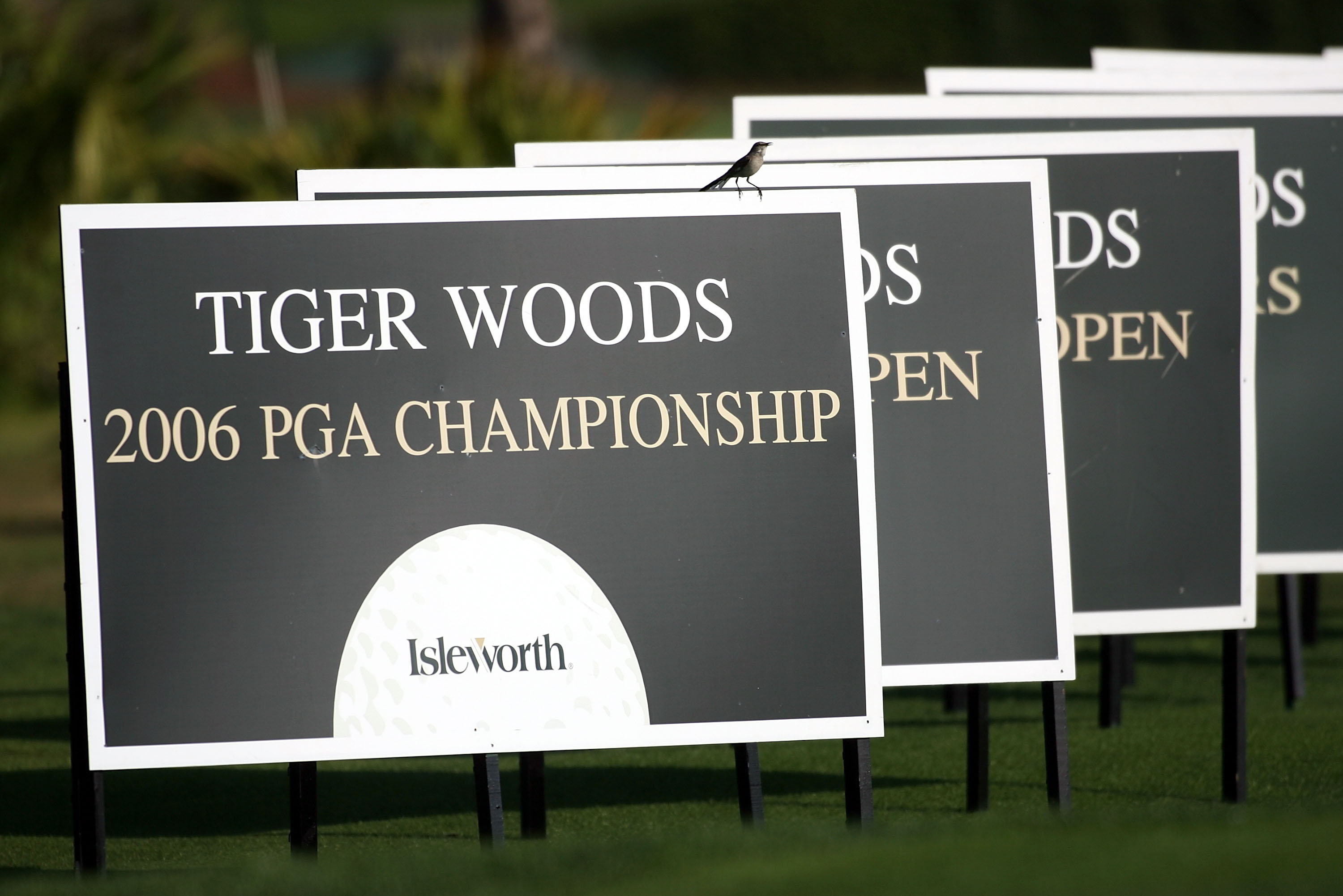 ORLANDO, FL - MARCH 26:  The major championships won by Tiger Woods are noted on these boards at the Tavistock Cup at Lake Nona March 26, 2007 in Orlando, Florida.  (Photo by Marc Serota/Getty Images)