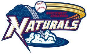 50 Most Original Minor League Baseball Team Names | Bleacher