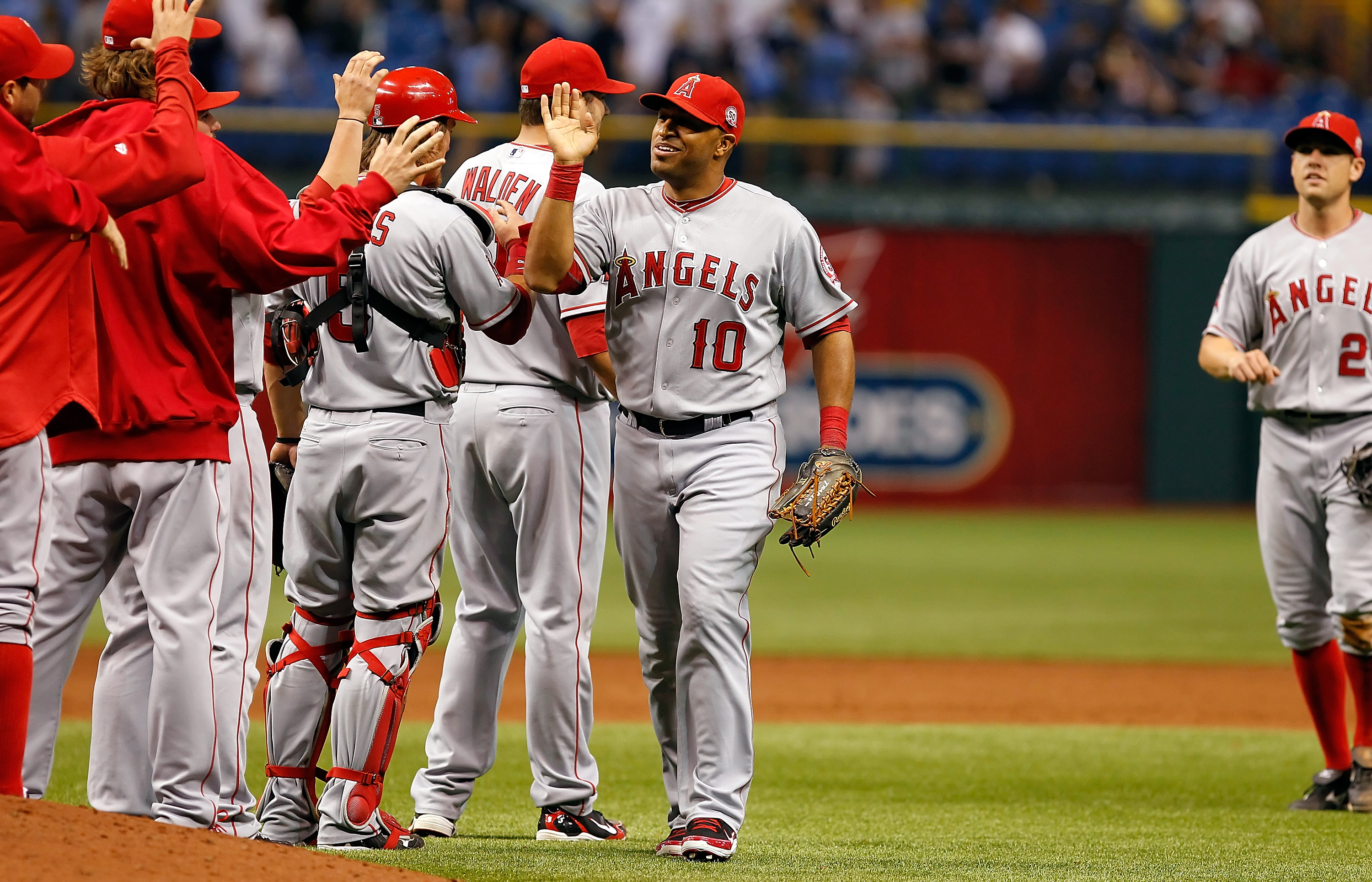 ST. PETERSBURG, FL - APRIL 29:  Outfielder Vernon Wells #10 of the Los Angeles Angels of Anaheim is congratulated by his teammates after their victory over the Tampa Bay Rays at Tropicana Field on April 29, 2011 in St. Petersburg, Florida.  (Photo by J. M