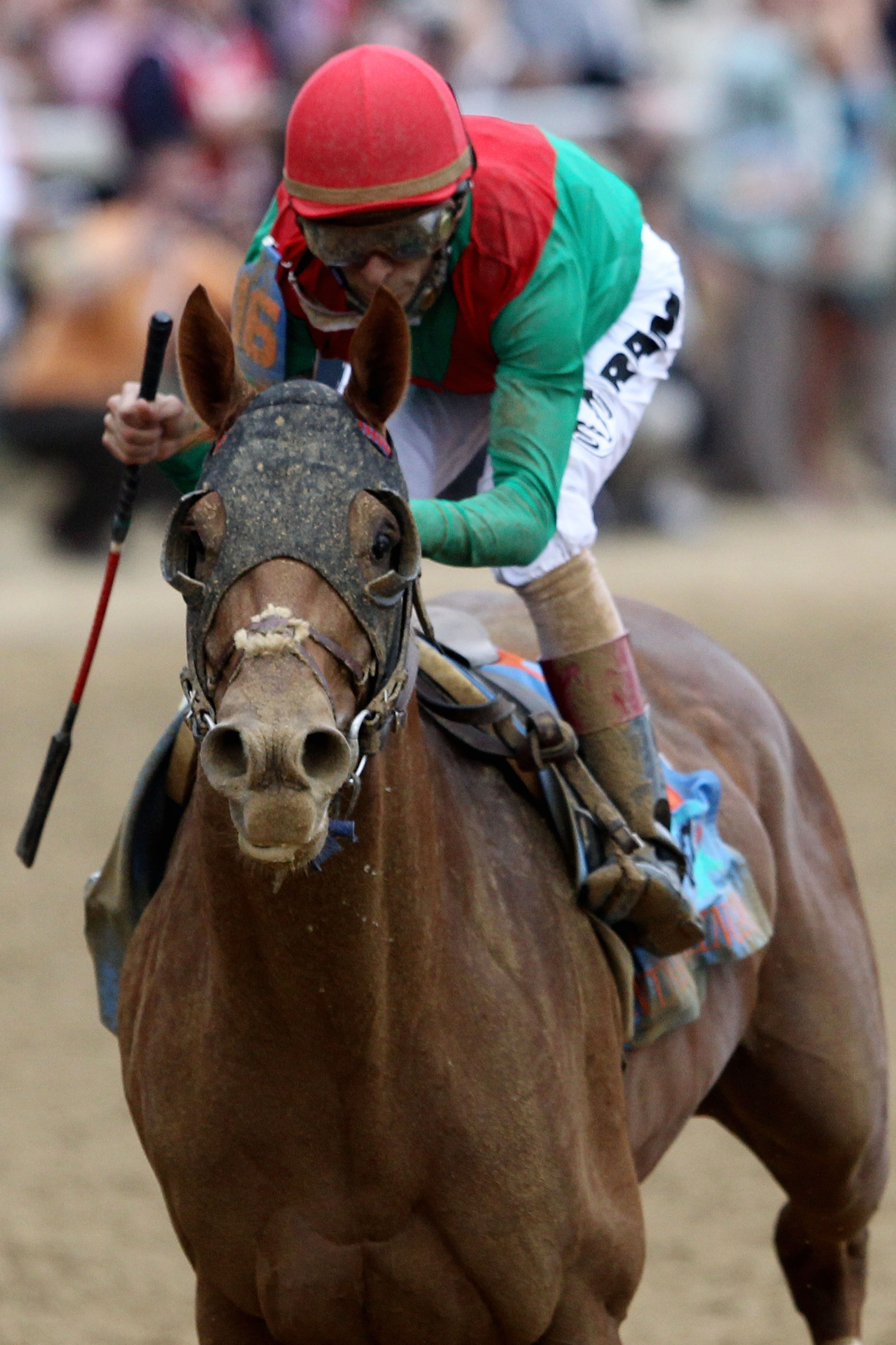 LOUISVILLE, KY - MAY 07:  Jockey John Velazquez, riding Animal Kingdom #16 crosses the finish line on way to winning the 137th Kentucky Derby at Churchill Downs on May 7, 2011 in Louisville, Kentucky.  (Photo by Matthew Stockman/Getty Images)